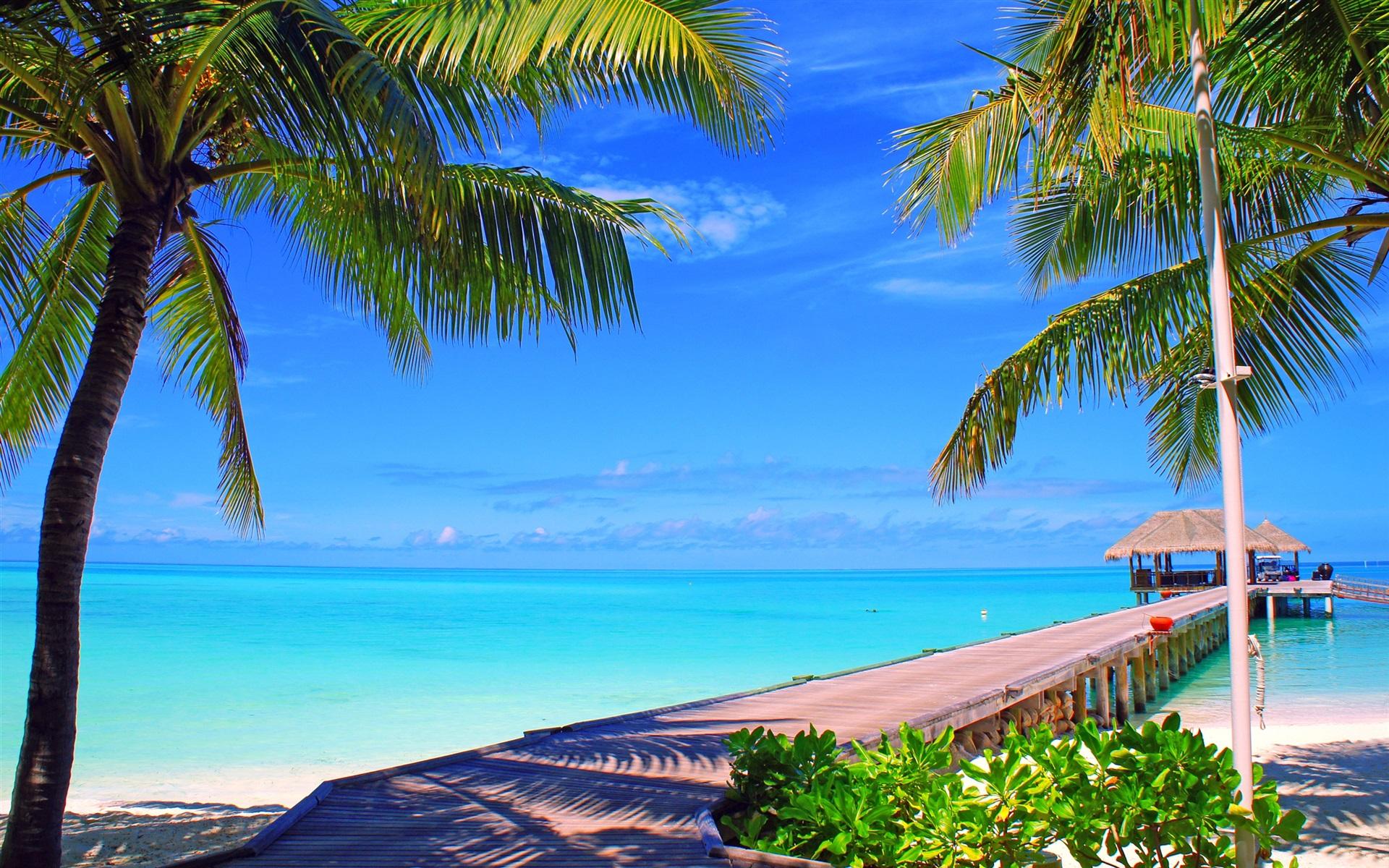 malediven insel palmen br cke bungalows meer ozean 2560x1600 hd hintergrundbilder hd bild. Black Bedroom Furniture Sets. Home Design Ideas