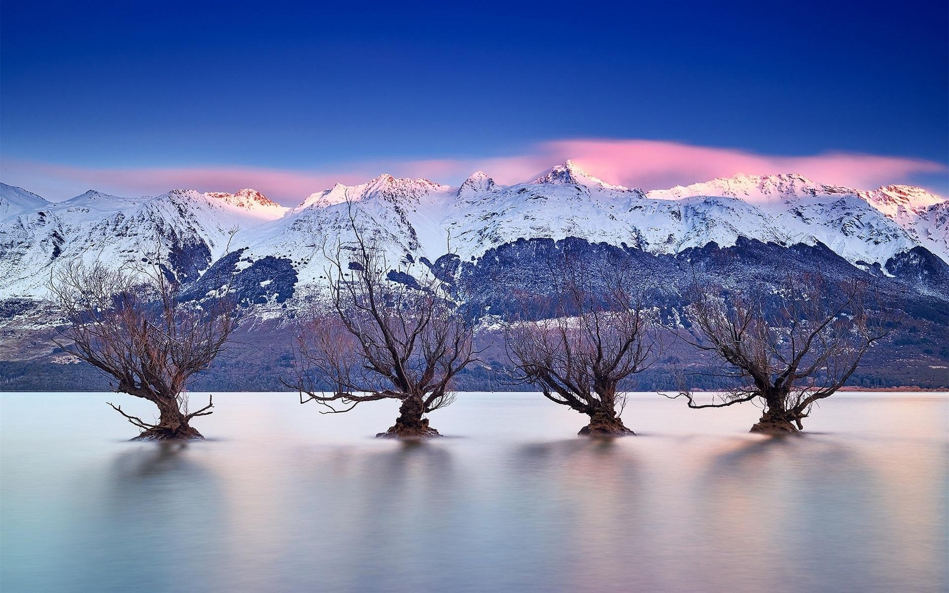 Wallpaper Lake Wakatipu, Queenstown, New Zealand, Southern Alps, Trees 1920X1200 Hd -7751