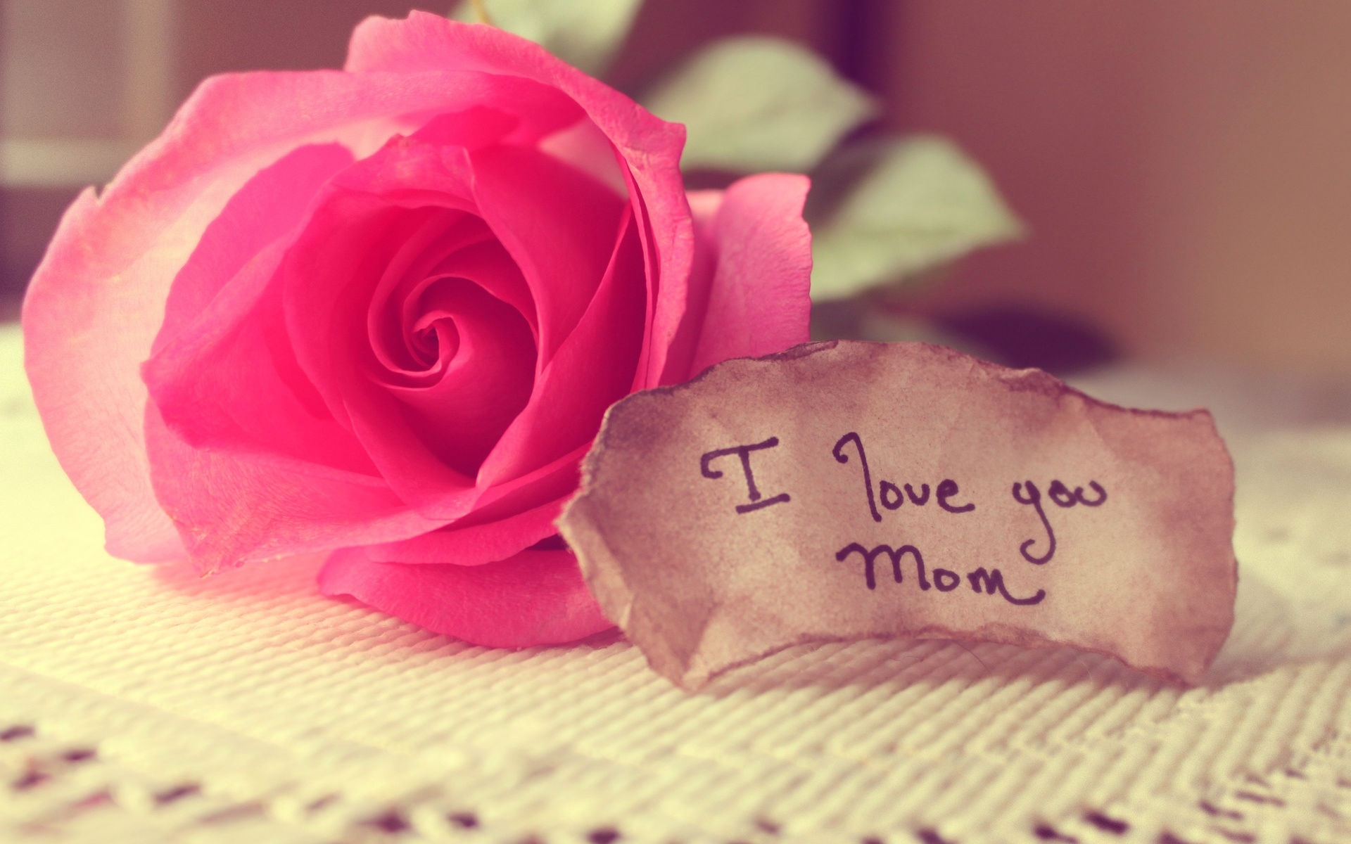 Wallpaper I Love You Mom Happy Mother S Day Rose 1920x1200 Hd