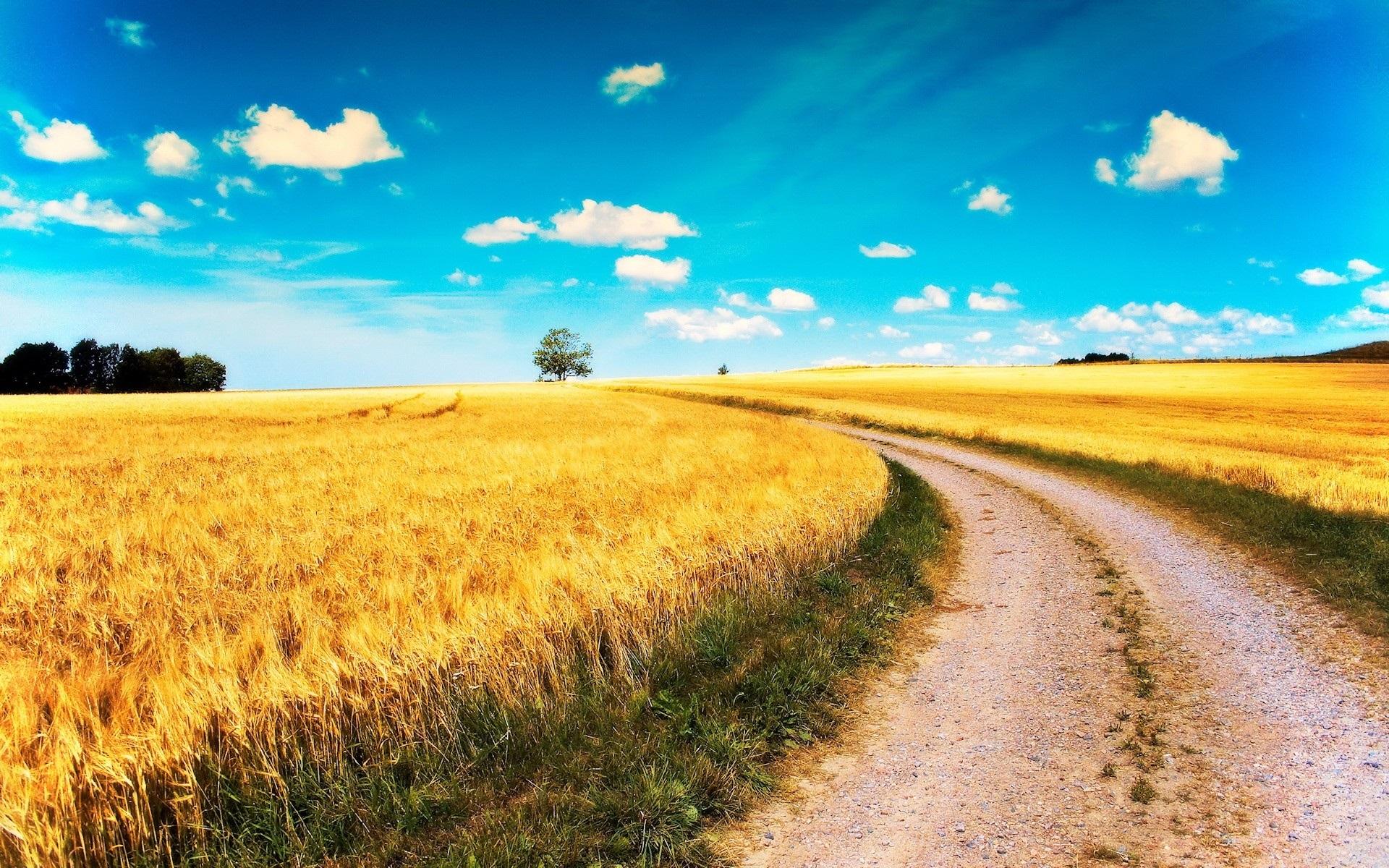 дорога степь небо скачать