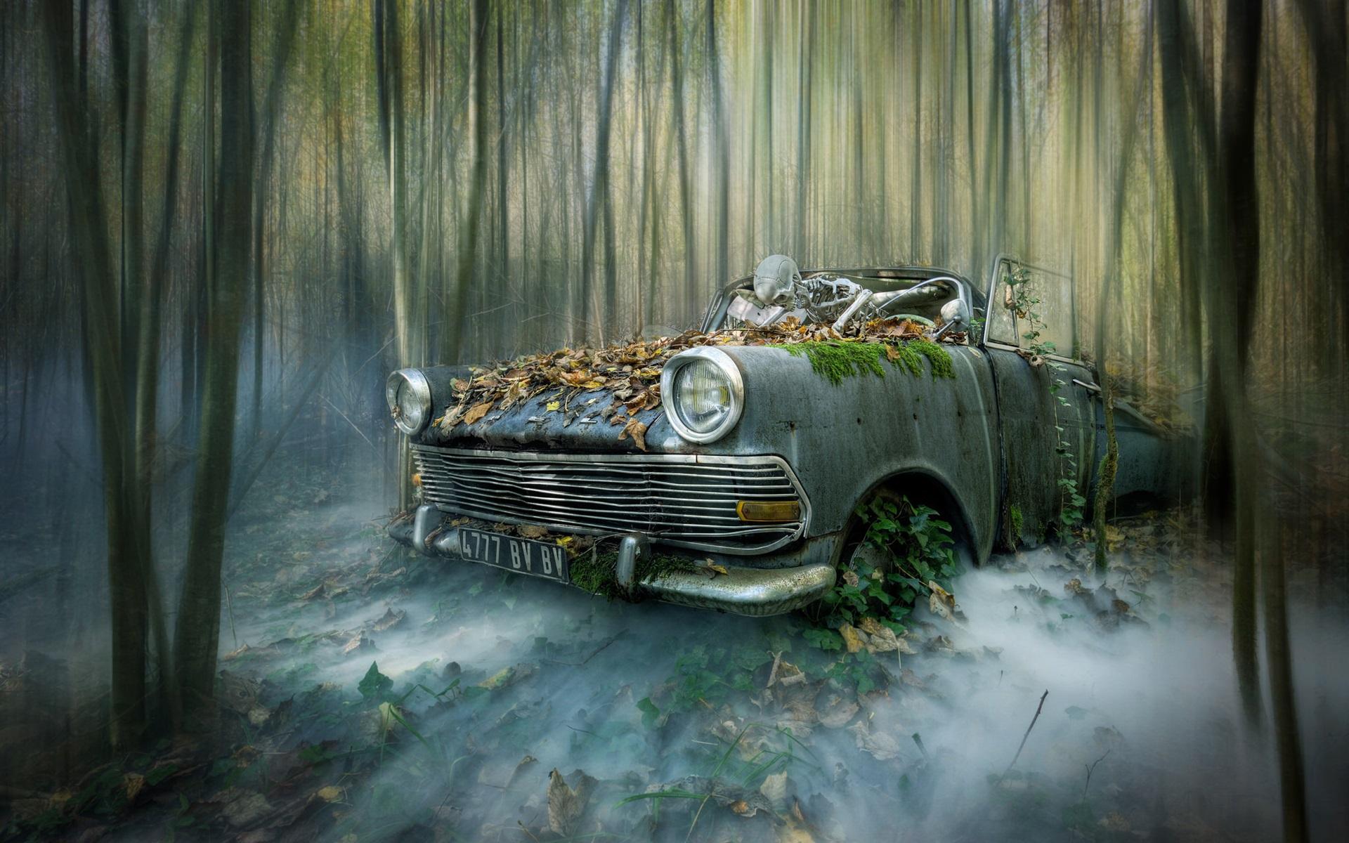 壁紙 壊れた車 スケルトン 森 創造的な写真 1920x1200 Hd 無料の