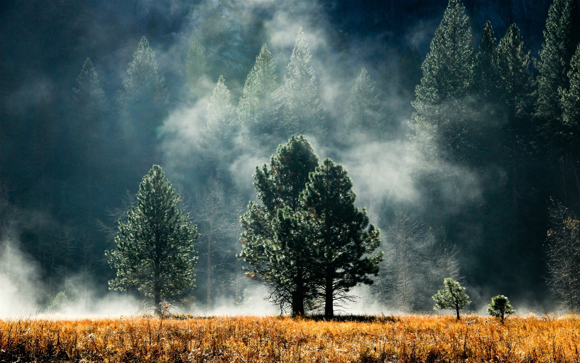 шифр весело обои туманные пейзажи мне