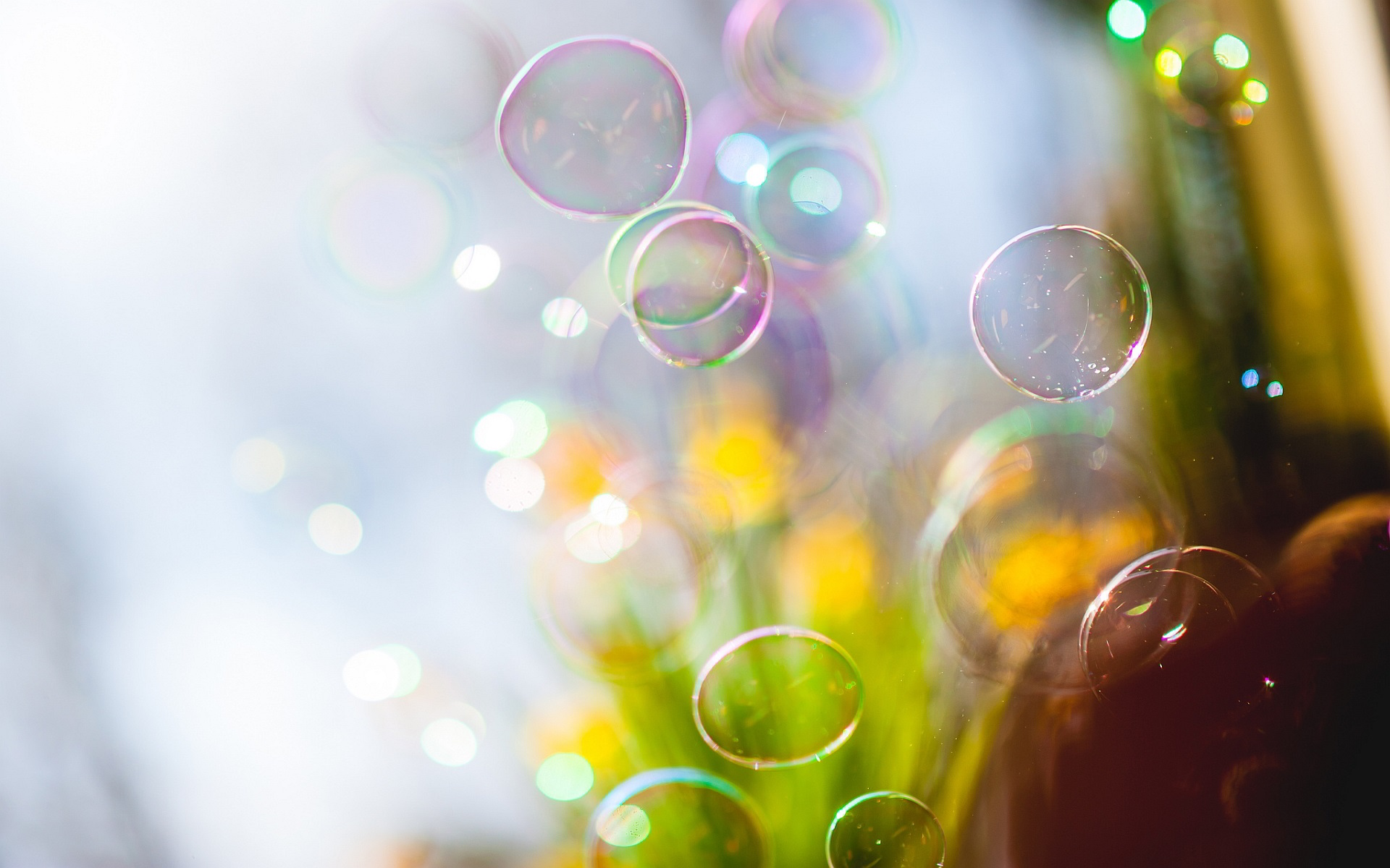 Wallpaper Soap Bubbles Flying Blurry 1920x1200 Hd Picture
