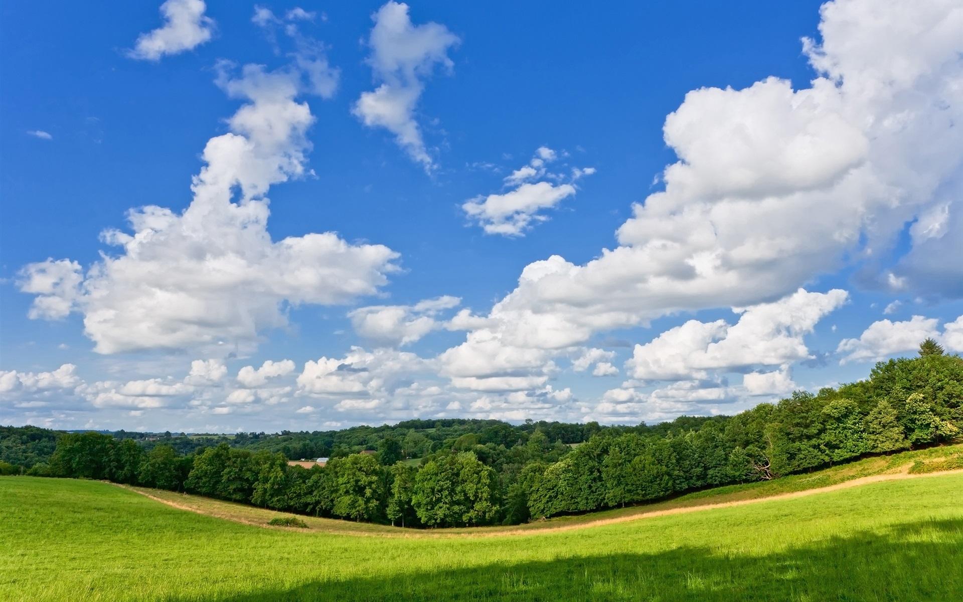 природа деревья трава небо облака nature trees grass the sky clouds скачать