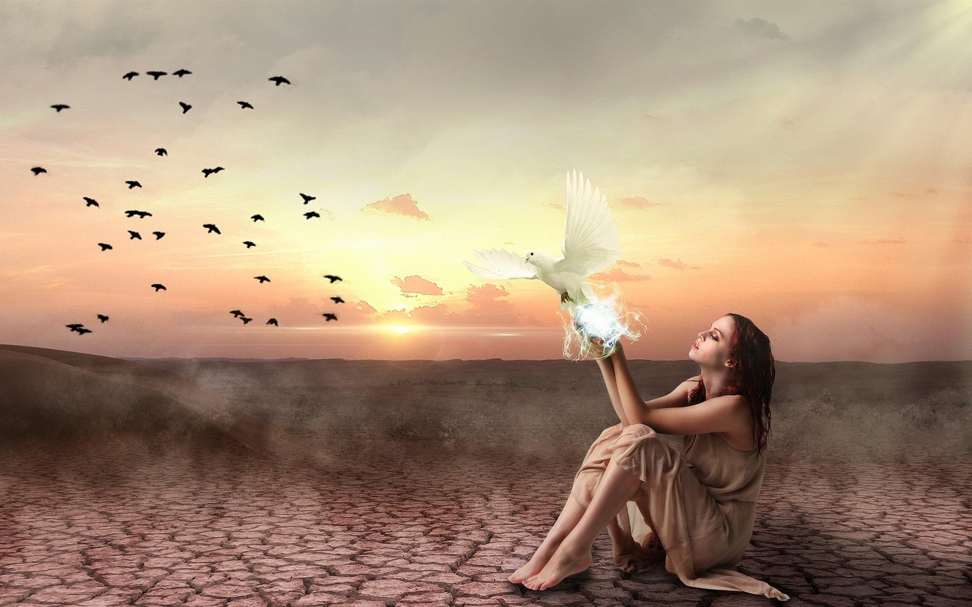 Картинка с голубями а ты бы улетел, февраля поздравления
