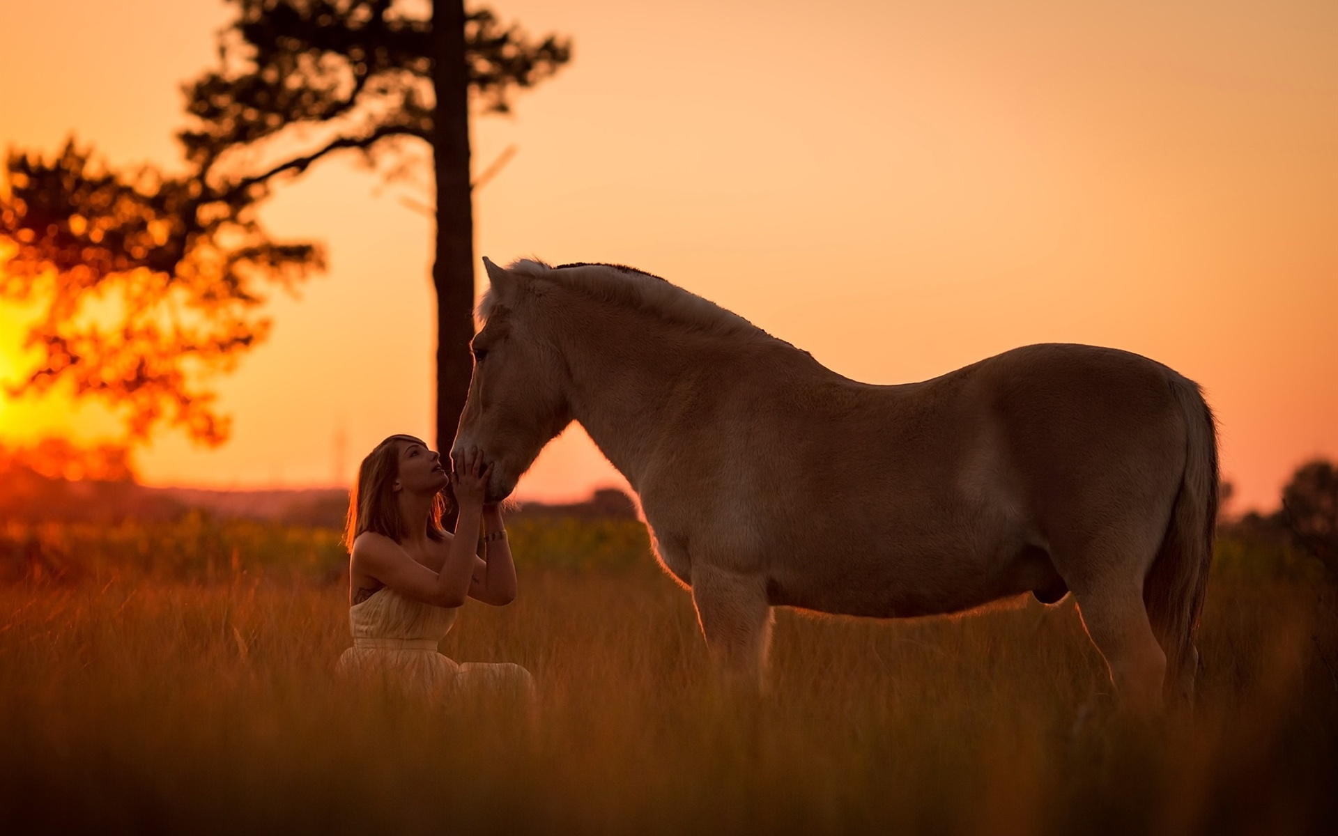 Wallpaper Girl And Horse At Sunset 1920x1200 Hd Picture Image