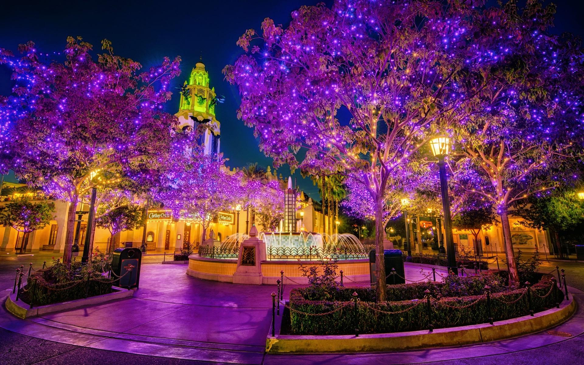 wallpaper city, park, night, beautiful holiday lights 1920x1200 hd