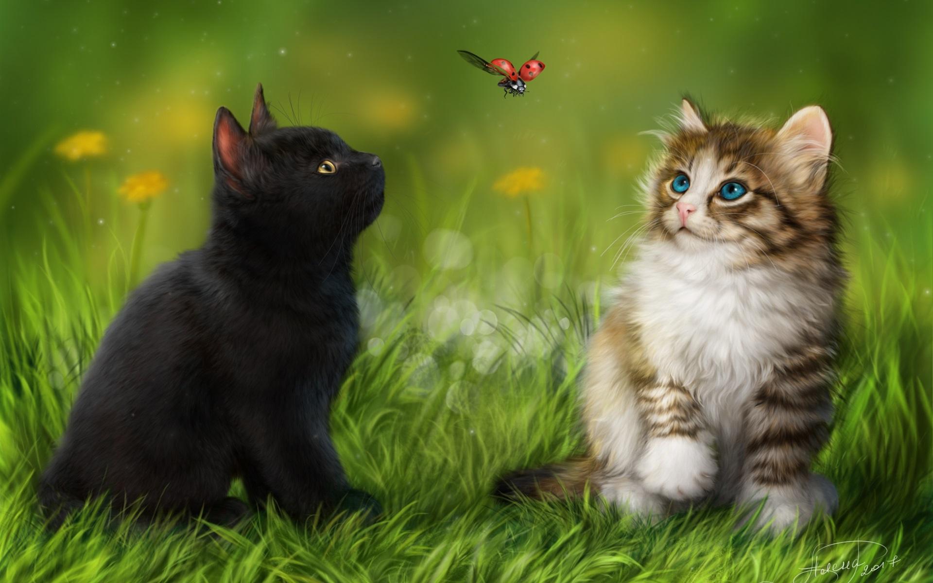 Котенок в мелкой траве  № 2954022 бесплатно
