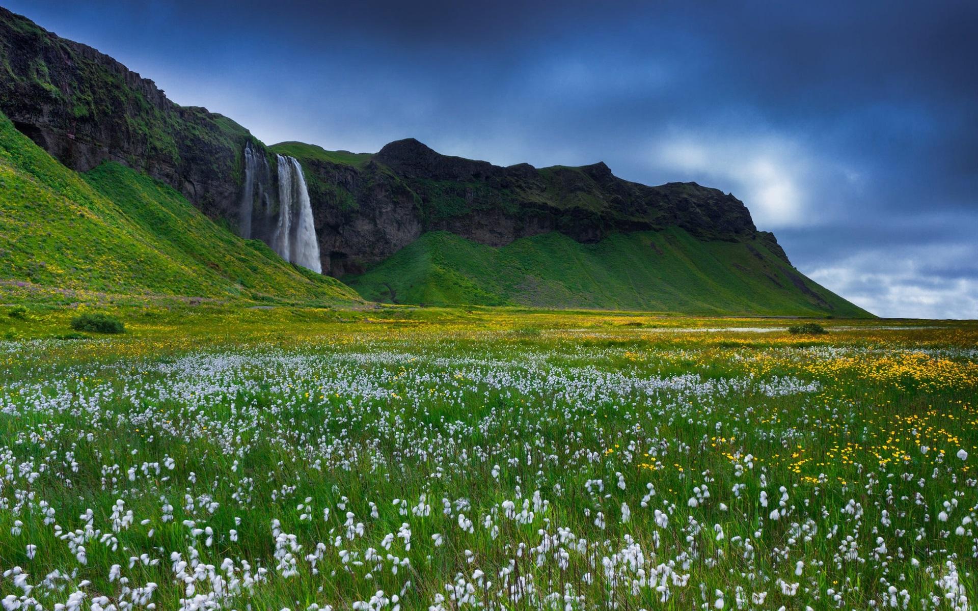 Fondos De Pantalla De Flores Hermosas: Fondos De Pantalla Islandia, Hermosa Cascada, Flores