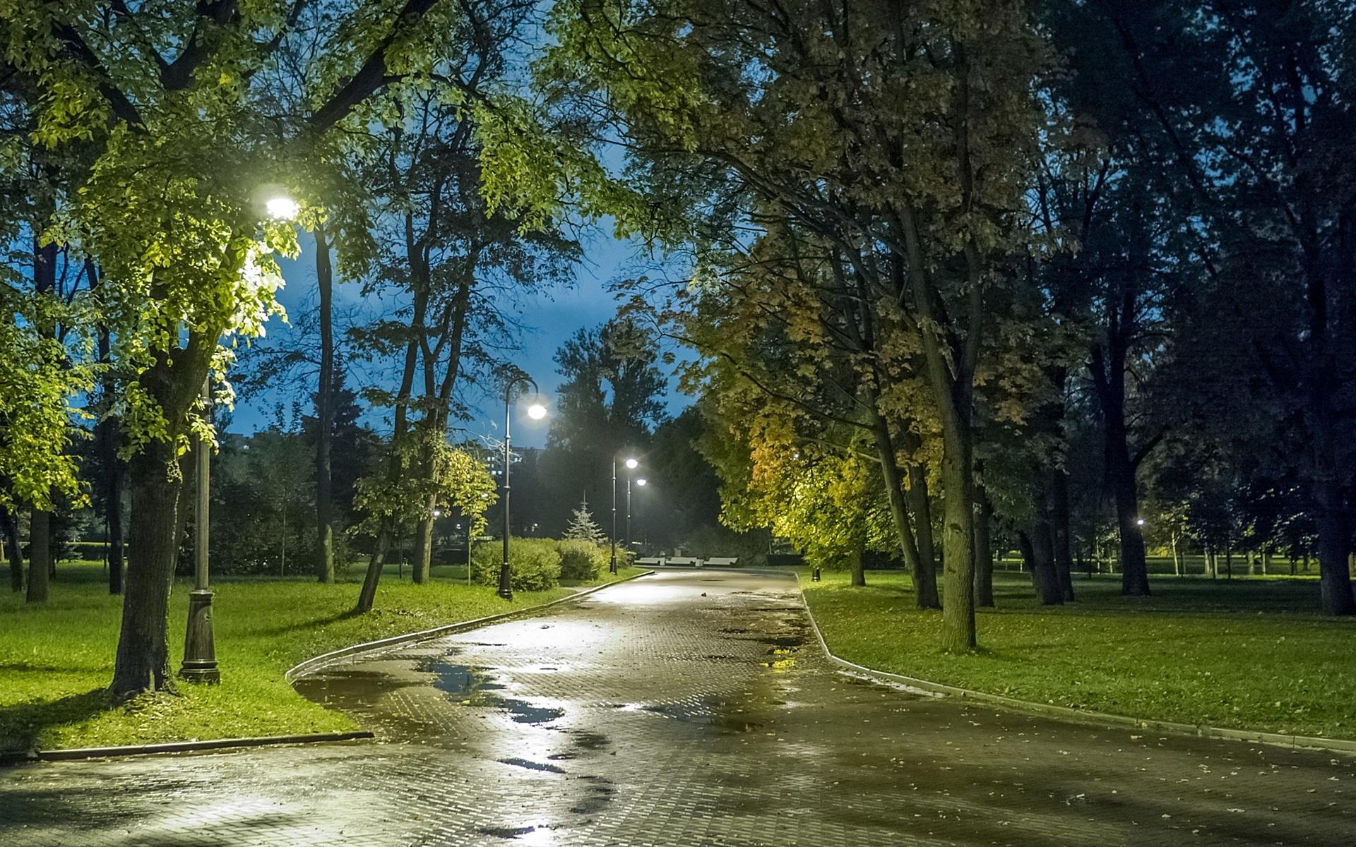 парк речка огни вечер скачать