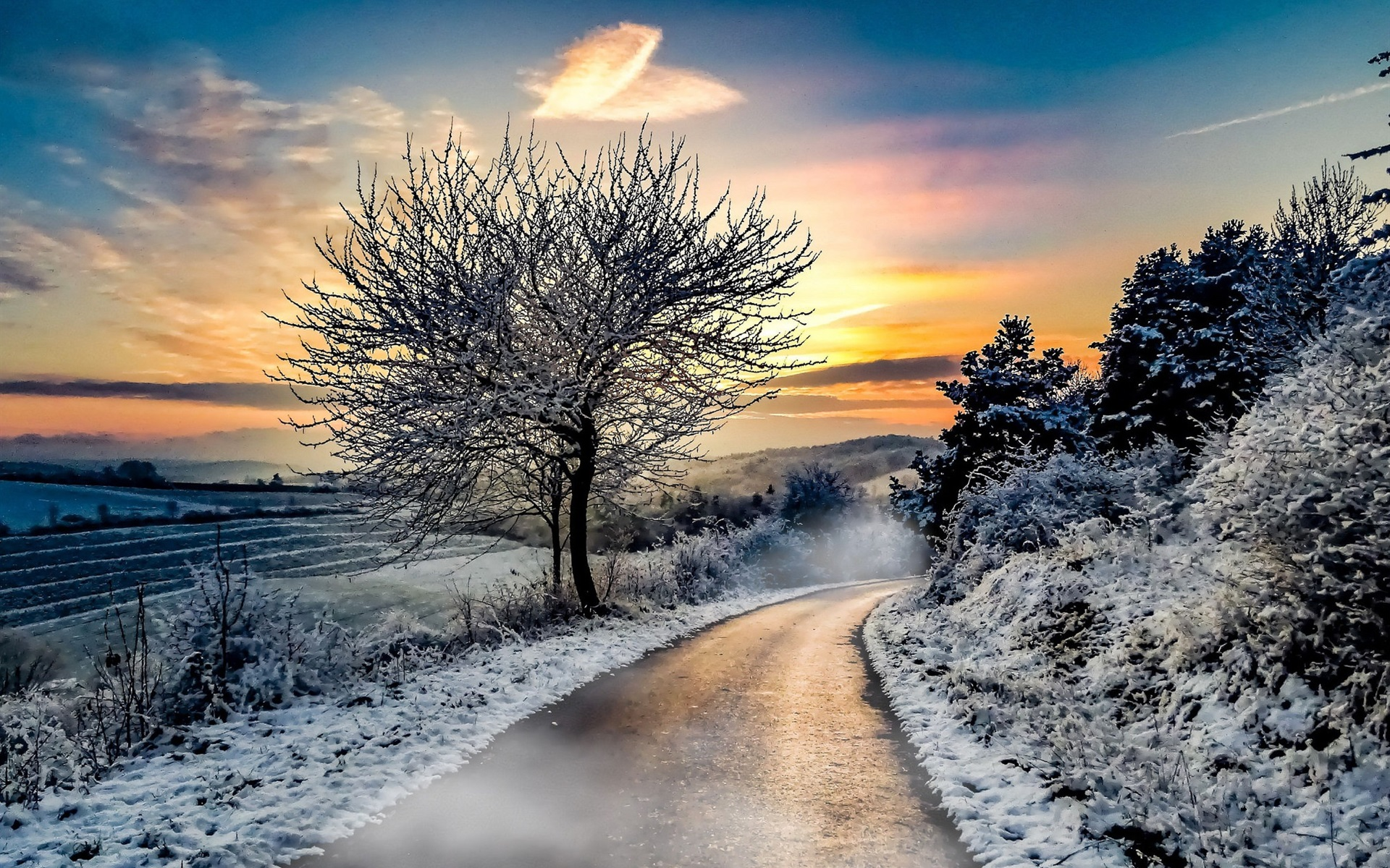 Wallpaper Winter Snow Trees Road Sunset 1920x1200 HD Picture Image