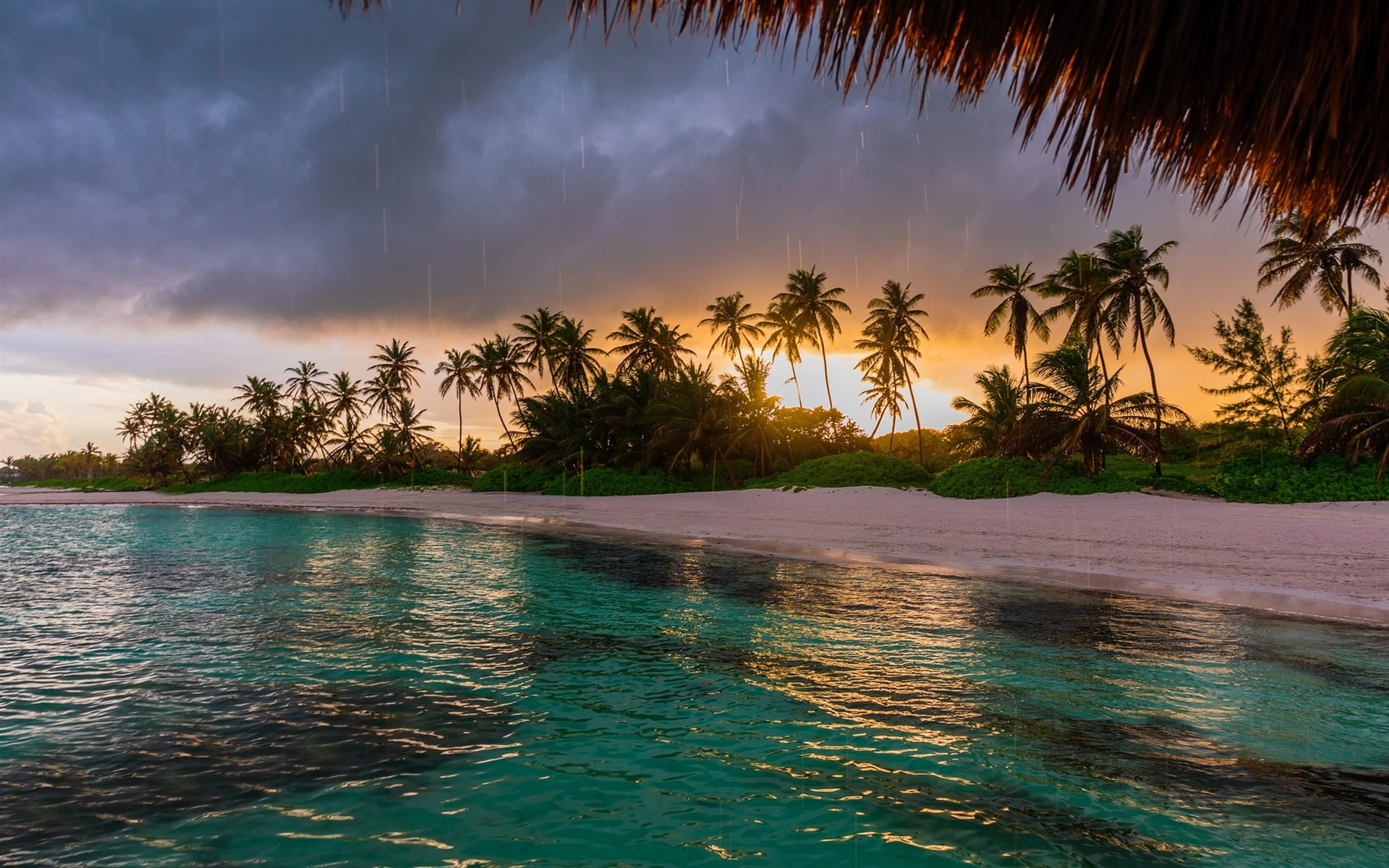 Sunset Over Beach Of Palm Trees Hd Wallpaper: Wallpaper Beach, Palm Trees, Ocean, Sunset 1920x1200 HD