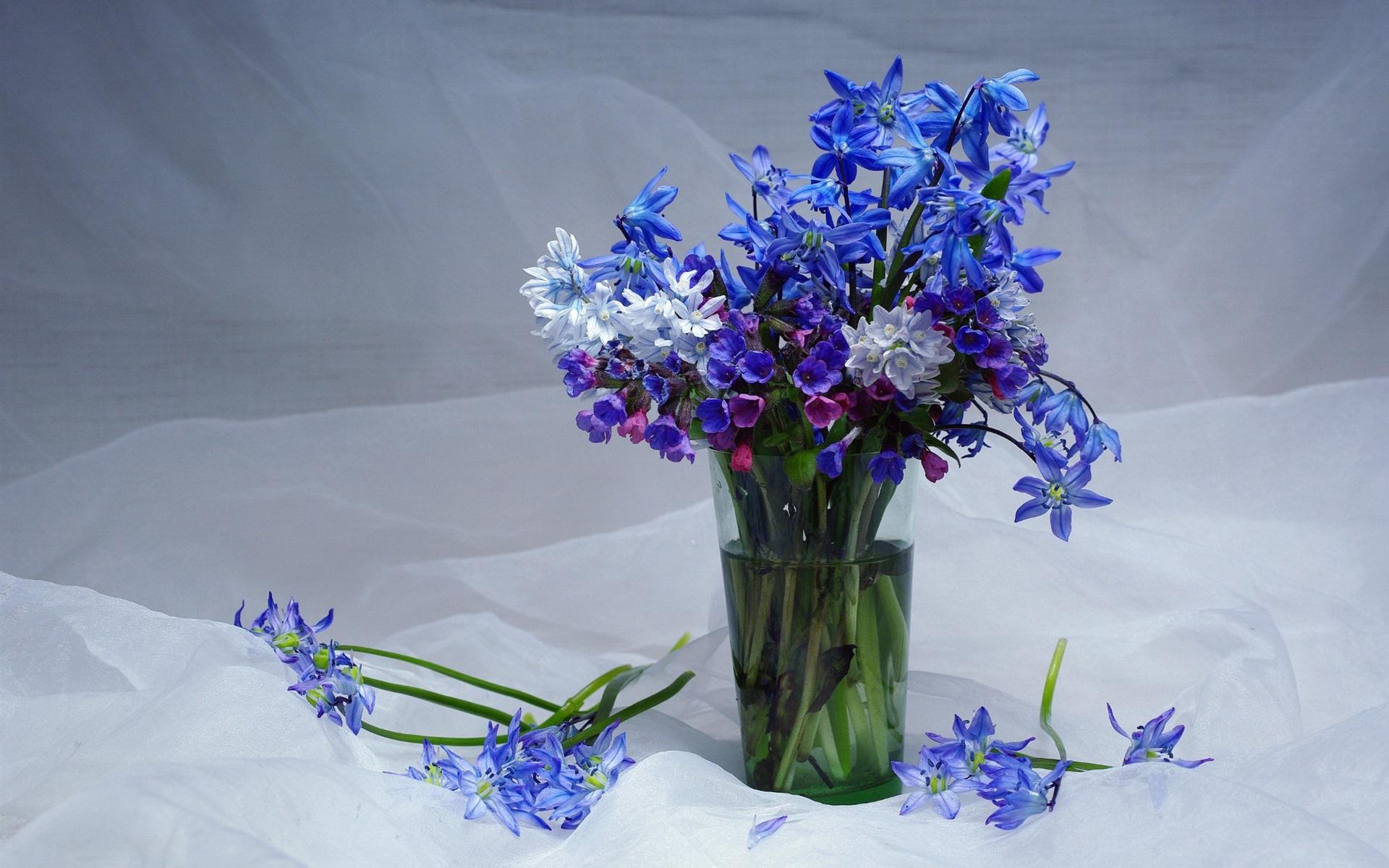 видели весенние первоцветы вазе фото картинки хотят жить долго