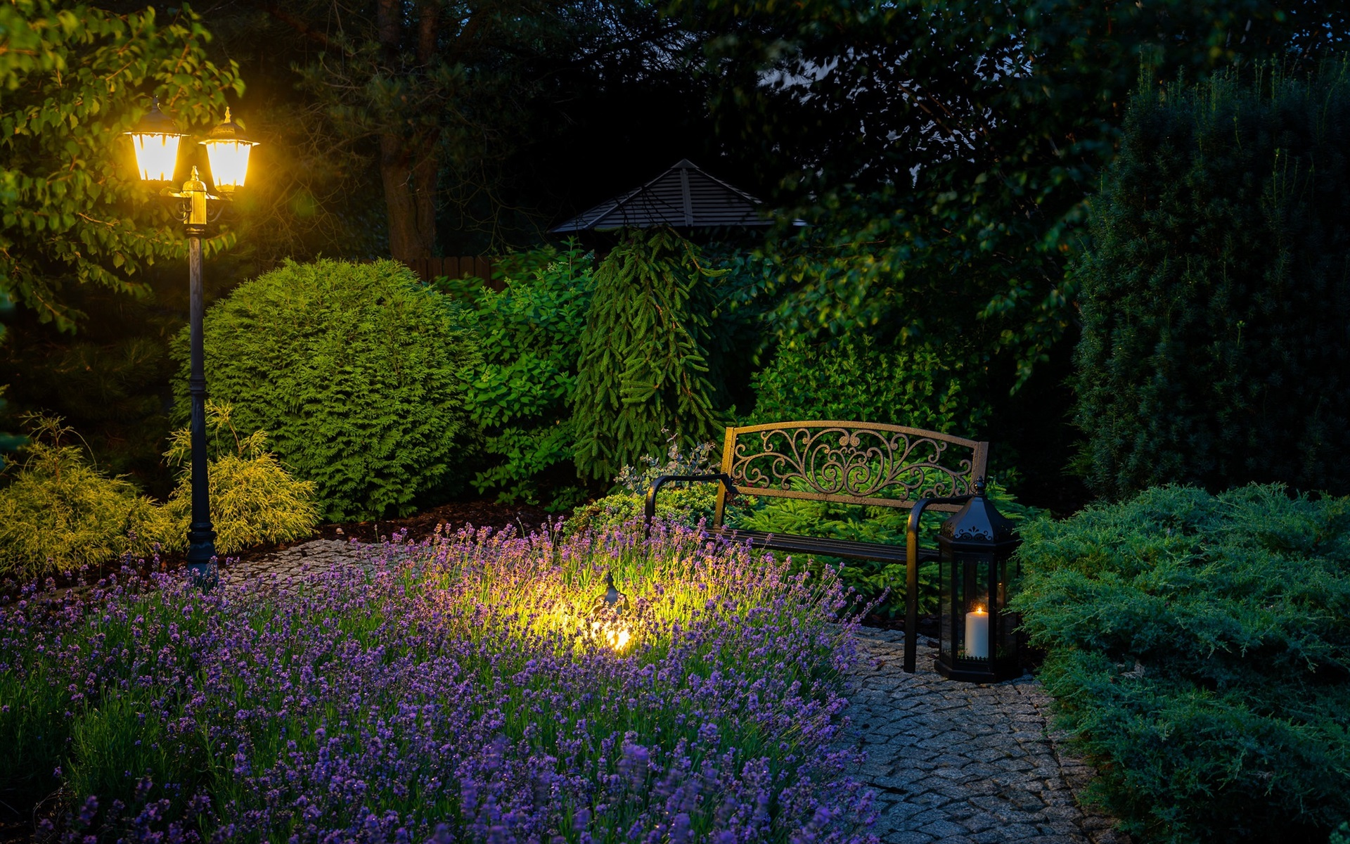 Wallpaper Night Park Bench Lavender Lights 1920x1200 Hd Picture