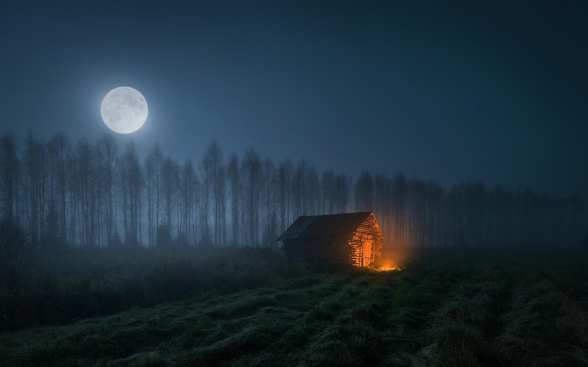 Wallpaper Night Trees Wood House Fire Moon 1920x1200 Hd