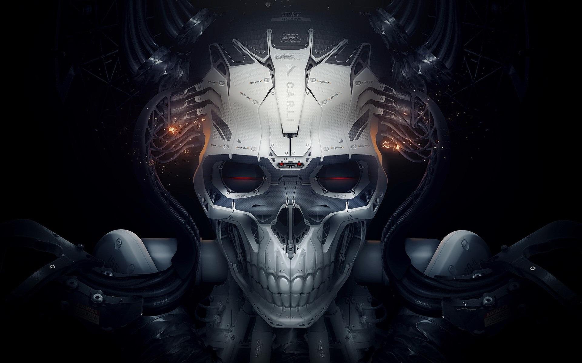 Wallpaper Skull Robot Creative Design 1920x1200 Hd Picture