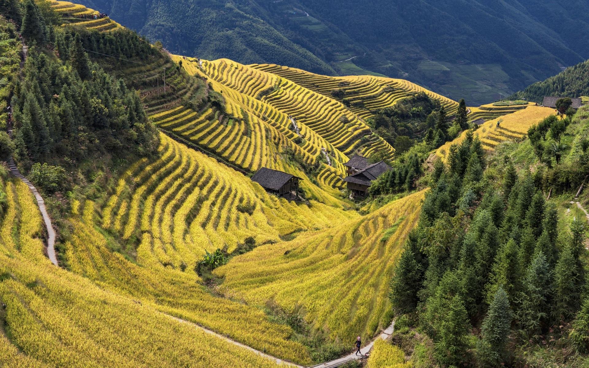 Fondos De Pantalla China Condado De Longsheng Hermoso