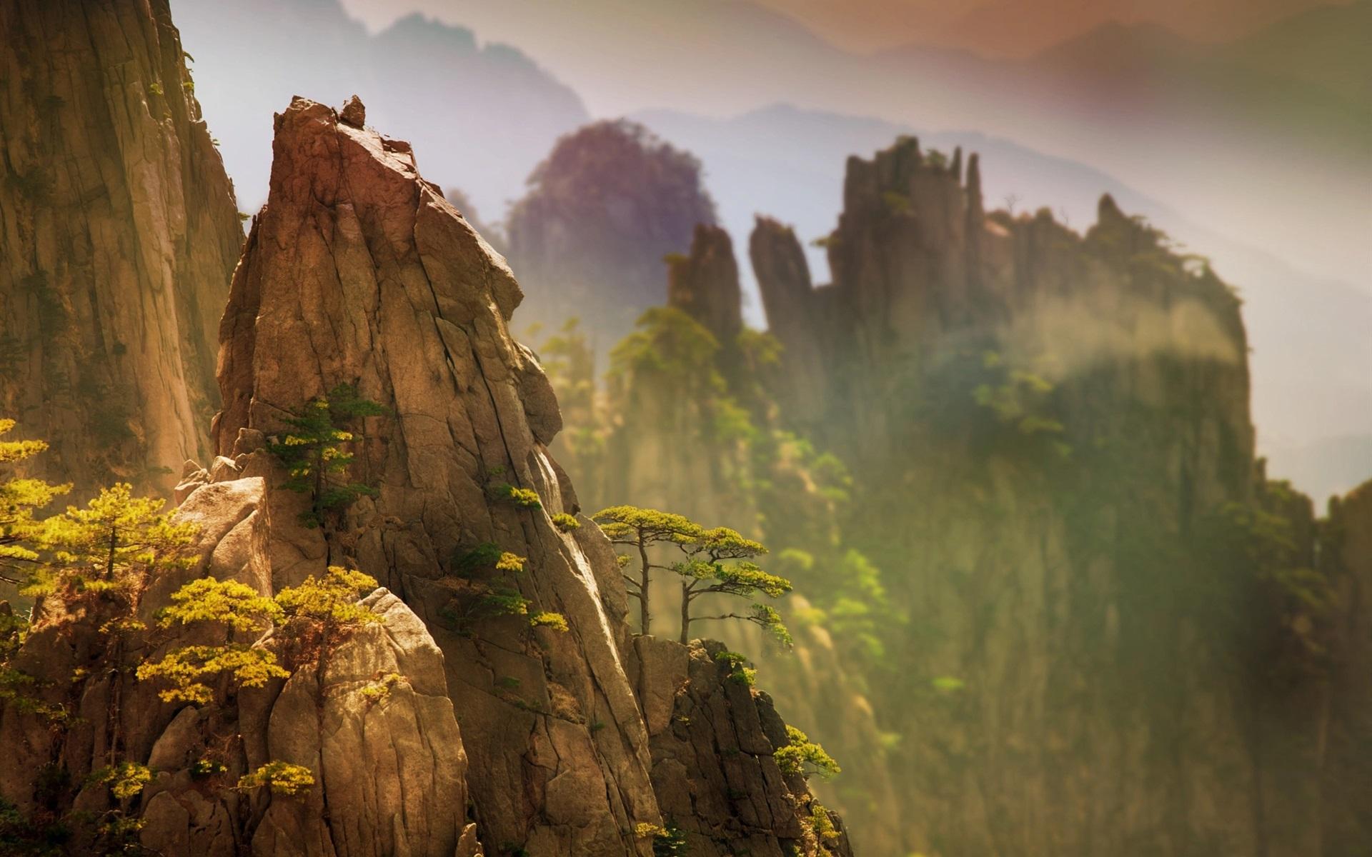 Wallpaper China, Beautiful Nature Landscape, Pine