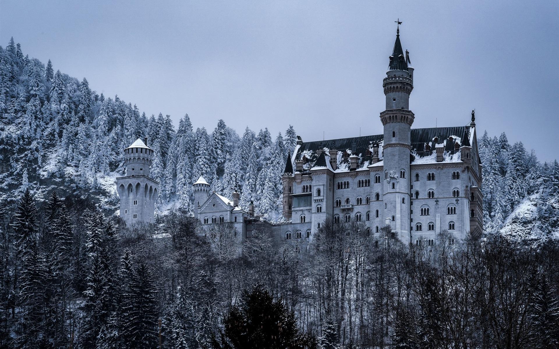 deutschland bayern schloss neuschwanstein b ume schnee winter 1920x1200 hd. Black Bedroom Furniture Sets. Home Design Ideas