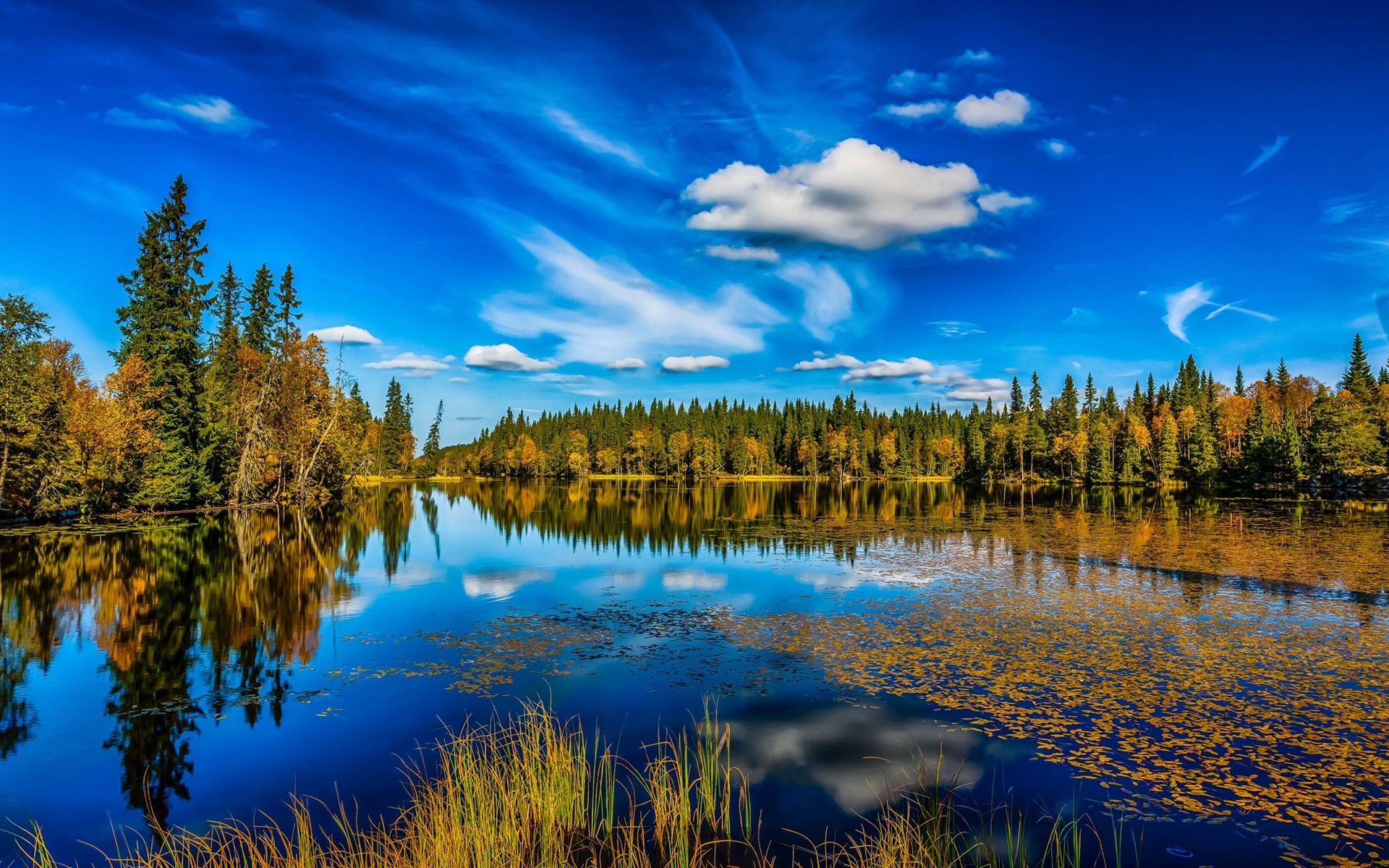 壁紙 ノルウェー 湖 木々 水の反射 青空 自然の風景 1920x1200 Hd
