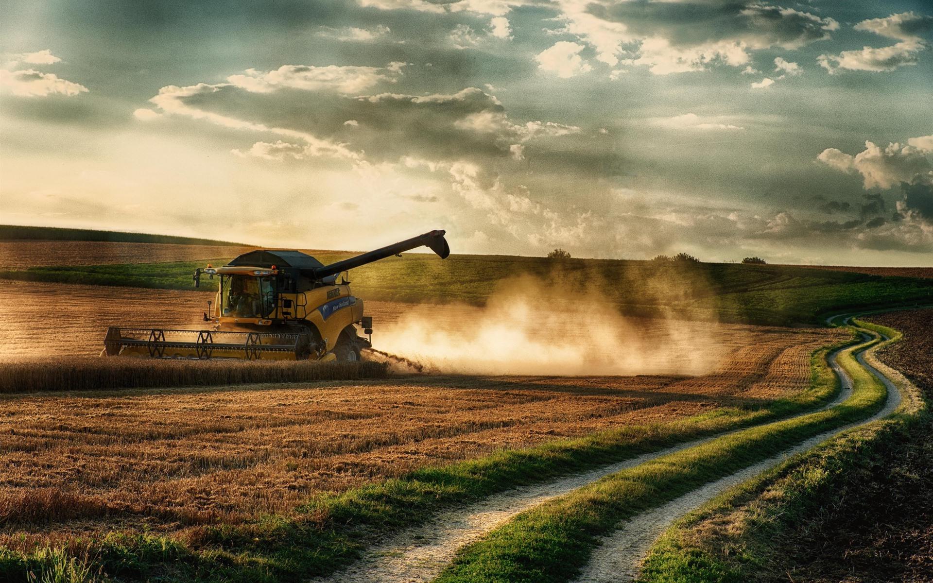 壁紙 収穫機 畑 道 雲 1920x1200 Hd 無料のデスクトップの背景 画像