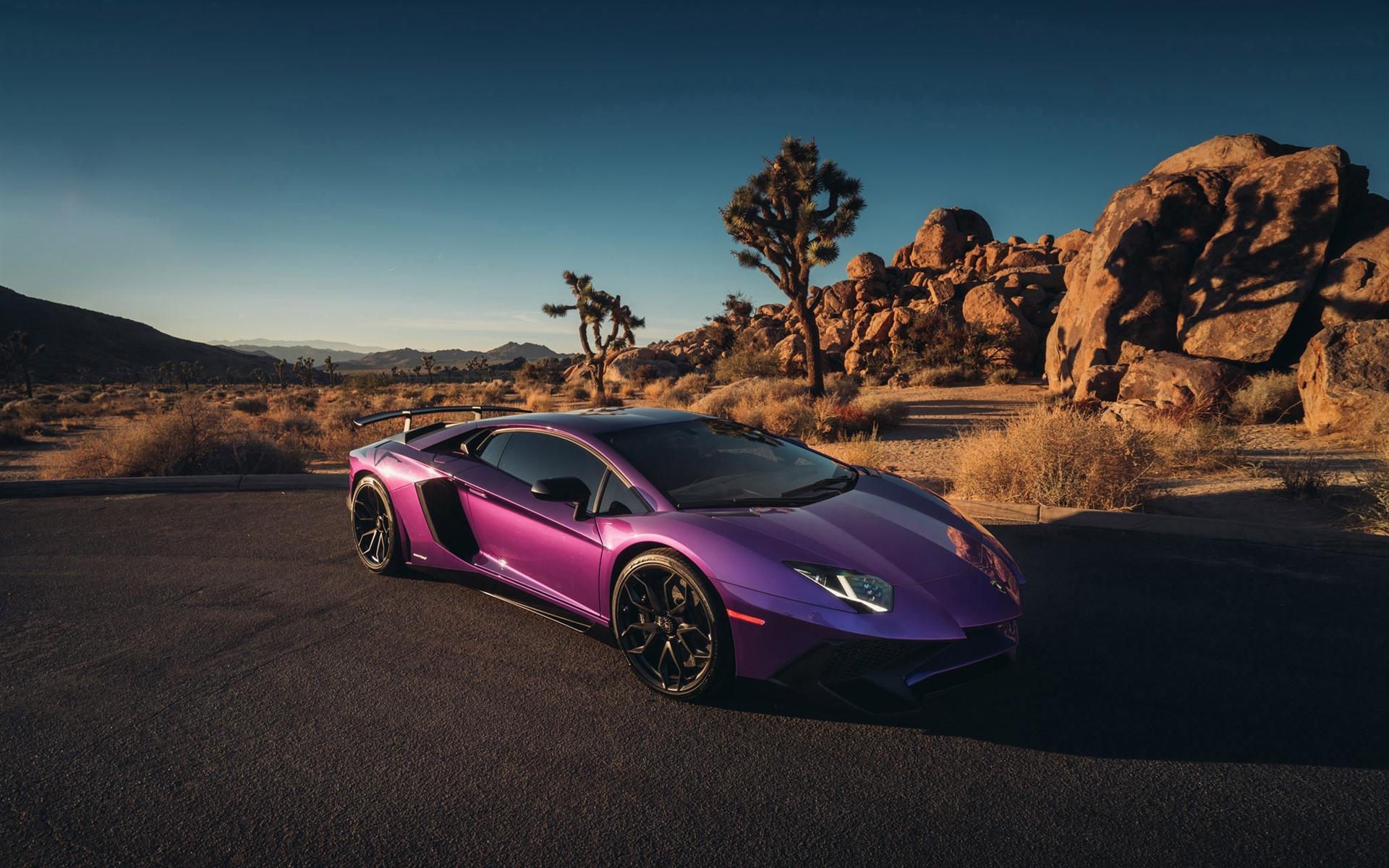 Wallpaper Lamborghini purple supercar 1920x1200 HD Picture