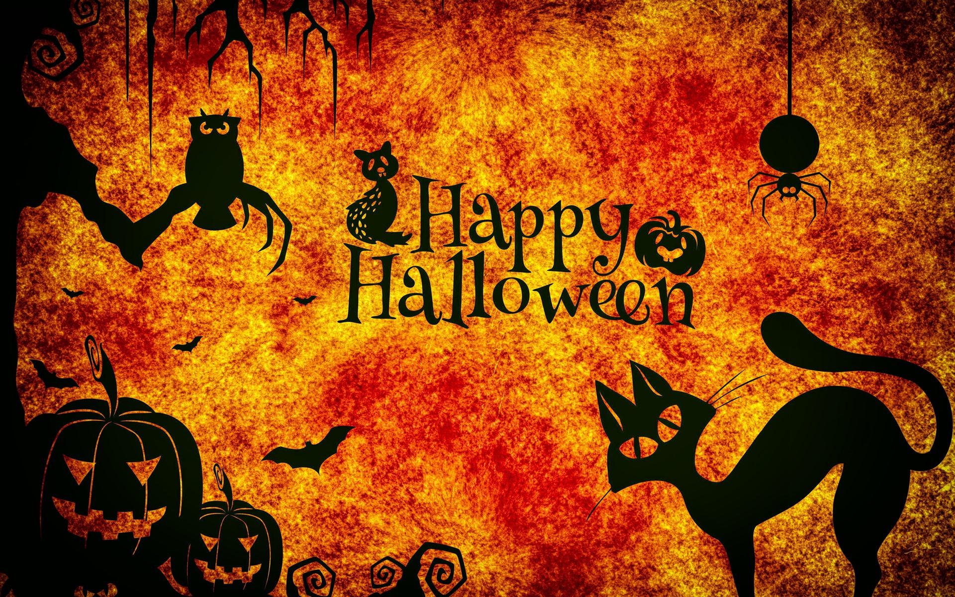 Happy Halloween Night Cats Owl Spider Pumpkin 1242x2688