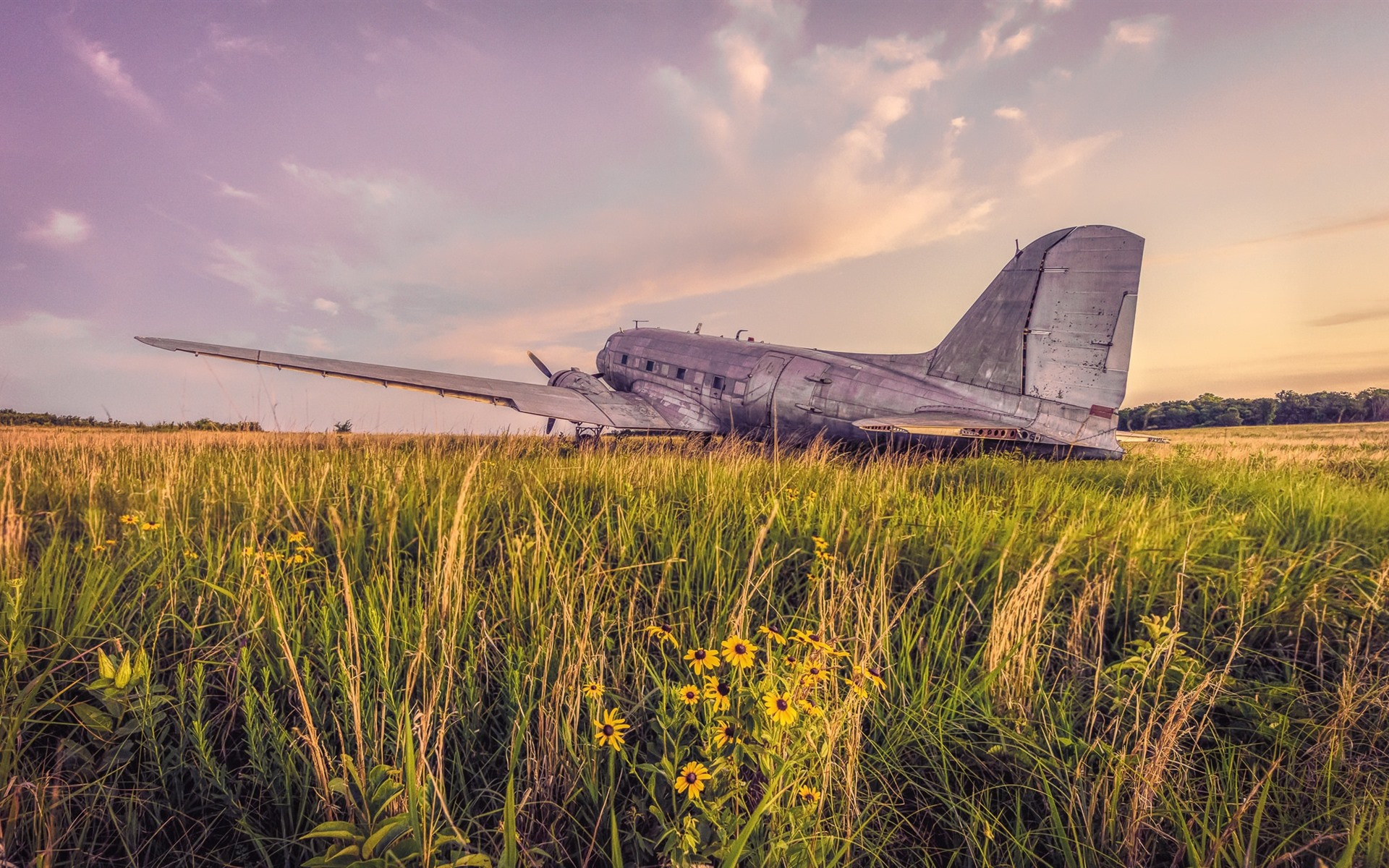 Wallpaper Old Plane Grass 1920x1200 Hd Picture Image