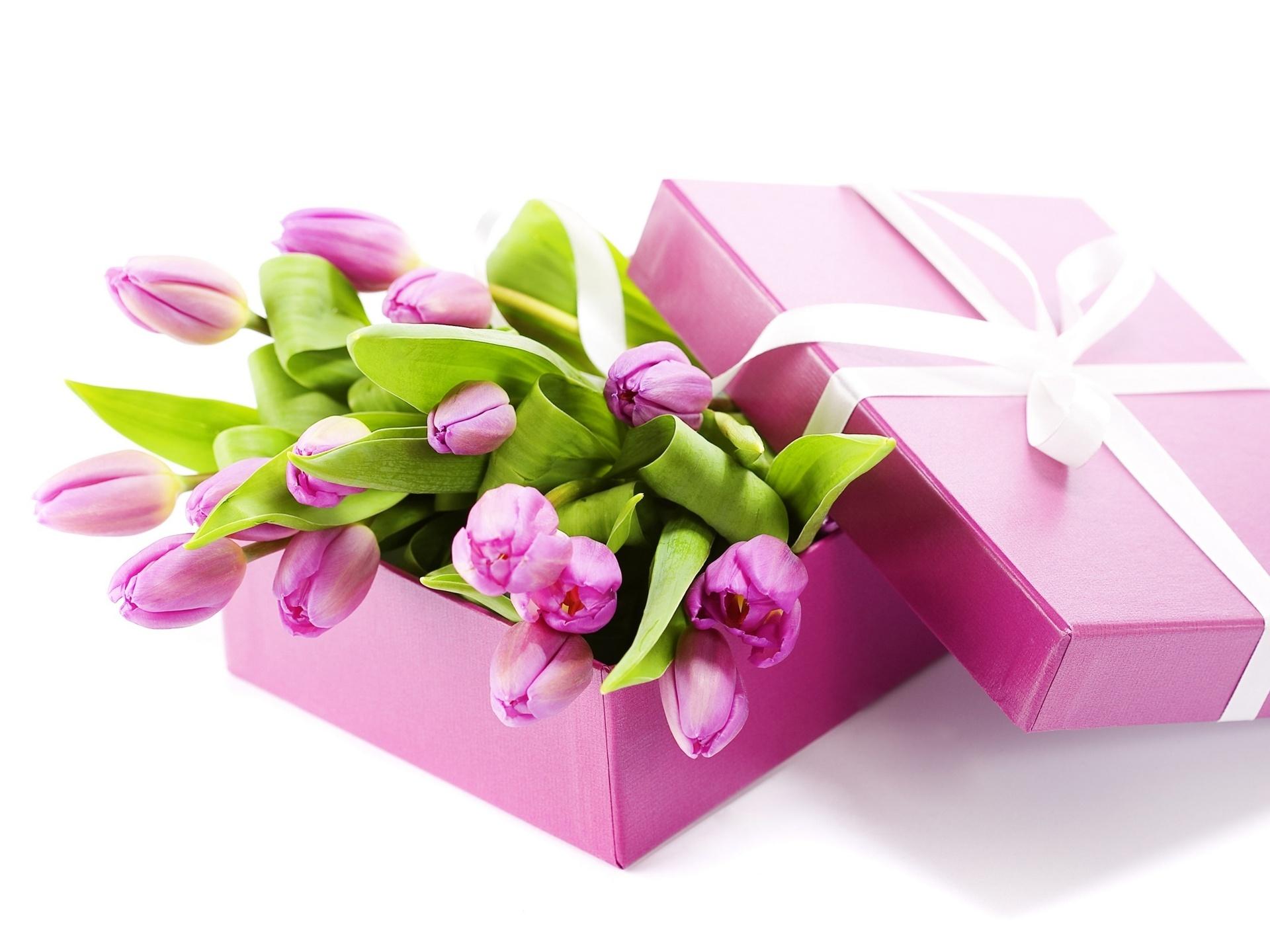 Открытка с тюльпанами с днём рождения женщине