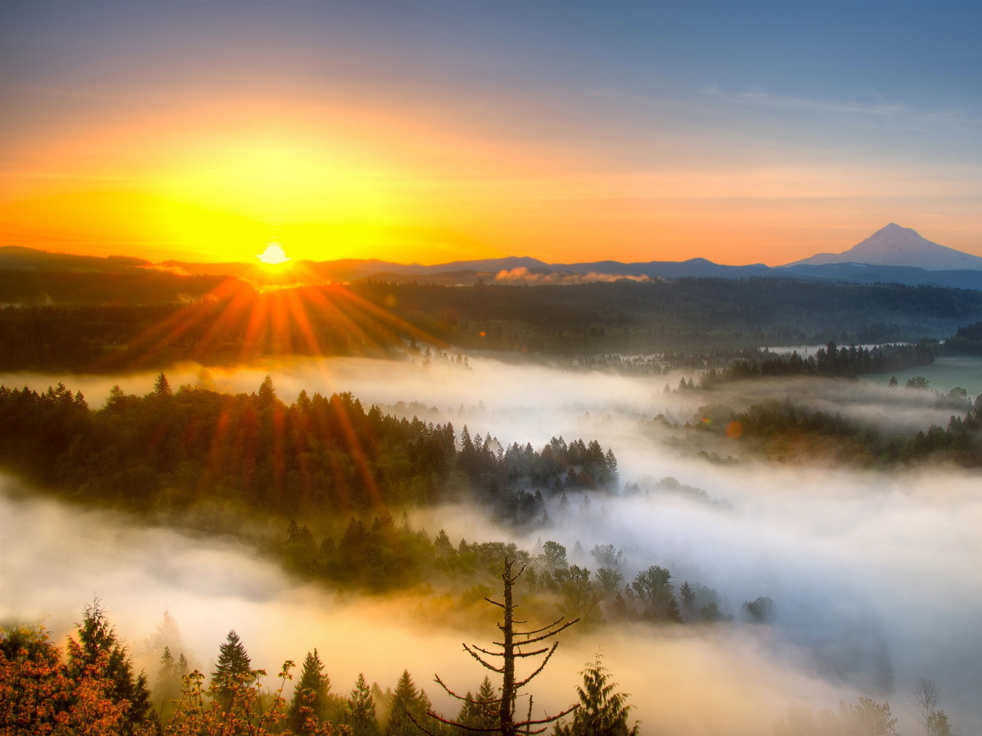 Wallpaper Morning Mist Mountain Sunrise 2560x1600 Hd Picture Image