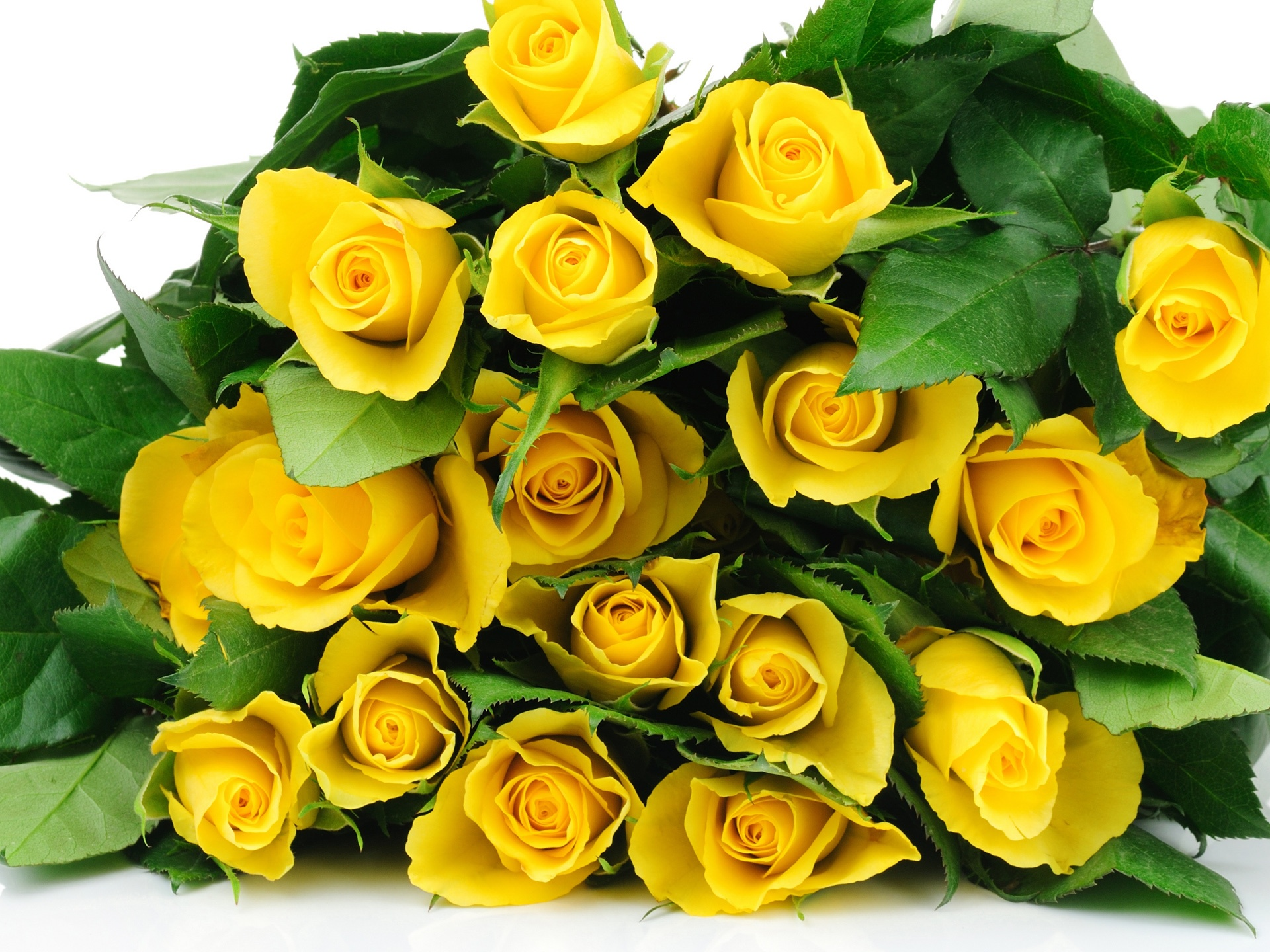 Wallpaper a bouquet flowers yellow roses 2560x1440 qhd picture image hd widescreen mightylinksfo