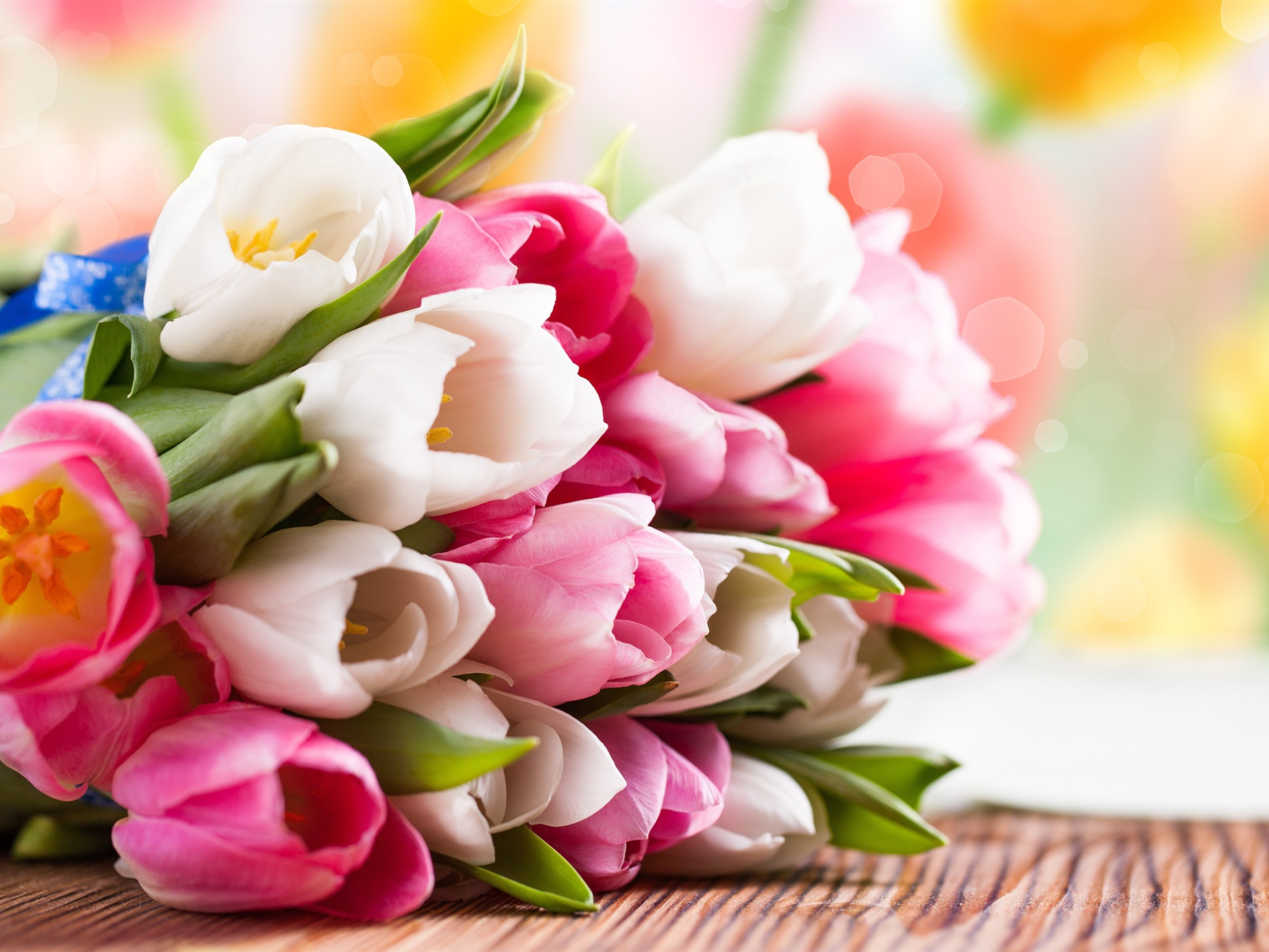 http://pt.best-wallpaper.net/wallpaper/1920x1440/1303/Pink-and-white-tulip-flower-bouquet_1920x1440.jpg