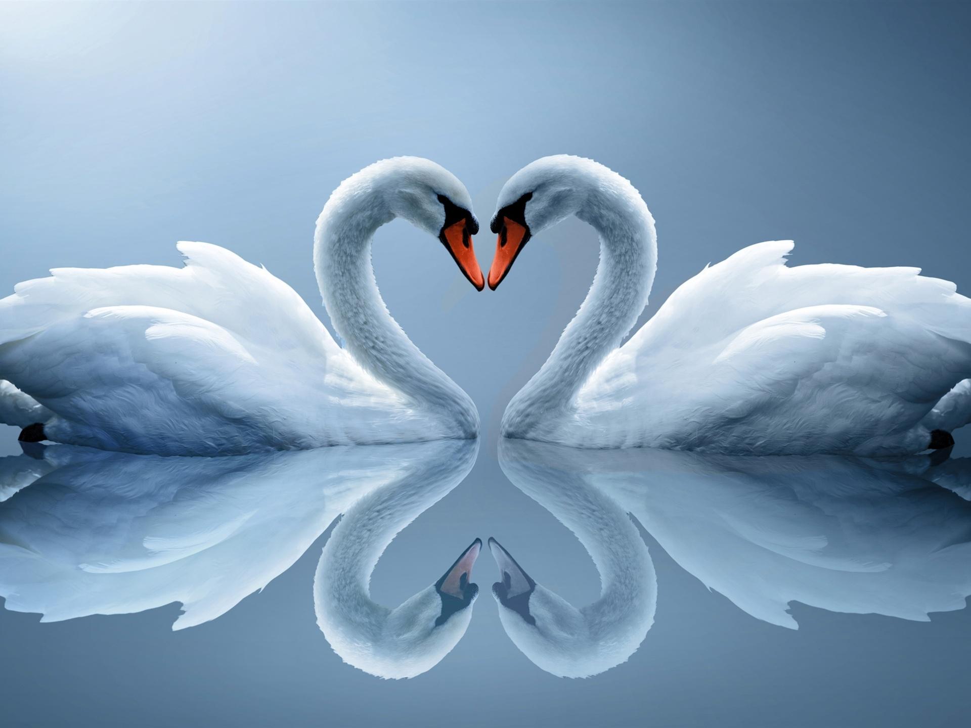 Разные картинки любви