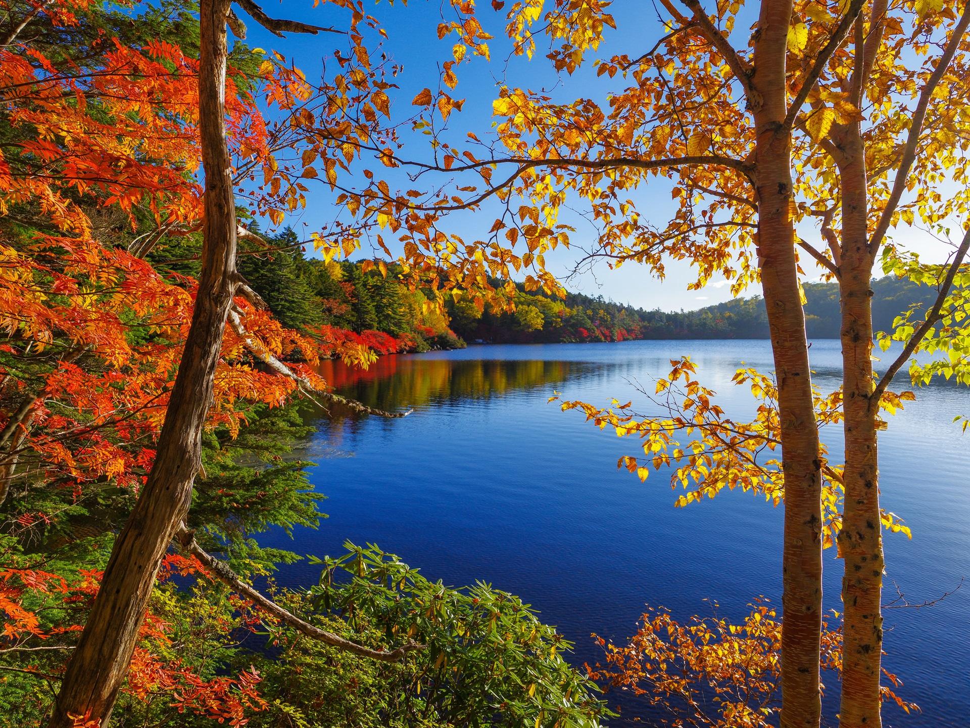 foto de Fonds d'écran Automne, lac, arbres, forêt, ciel 1920x1440 HD image