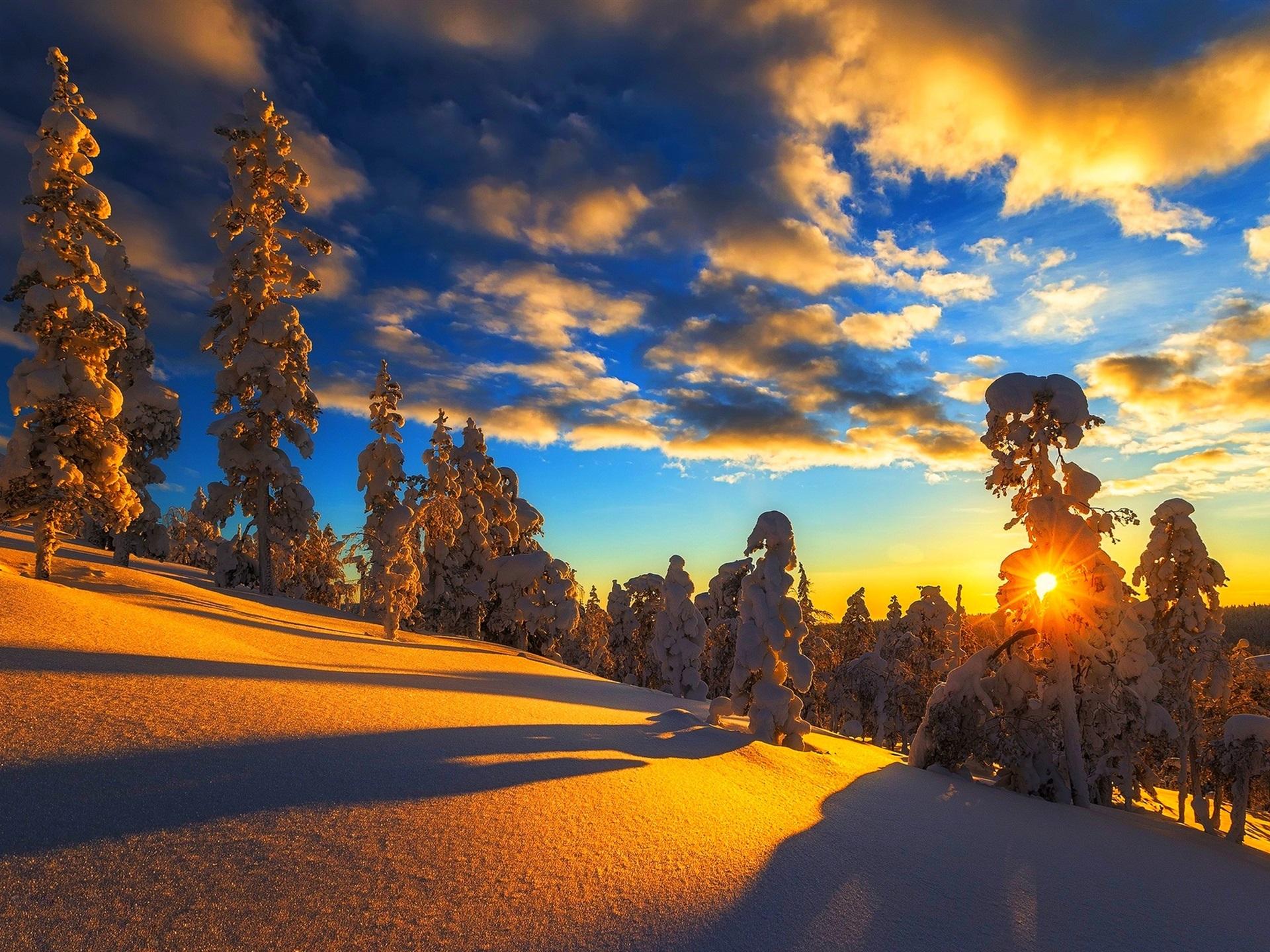 Montaña Nevada 1024x768: Fondos De Pantalla Invierno, Montaña, Nieve, árboles