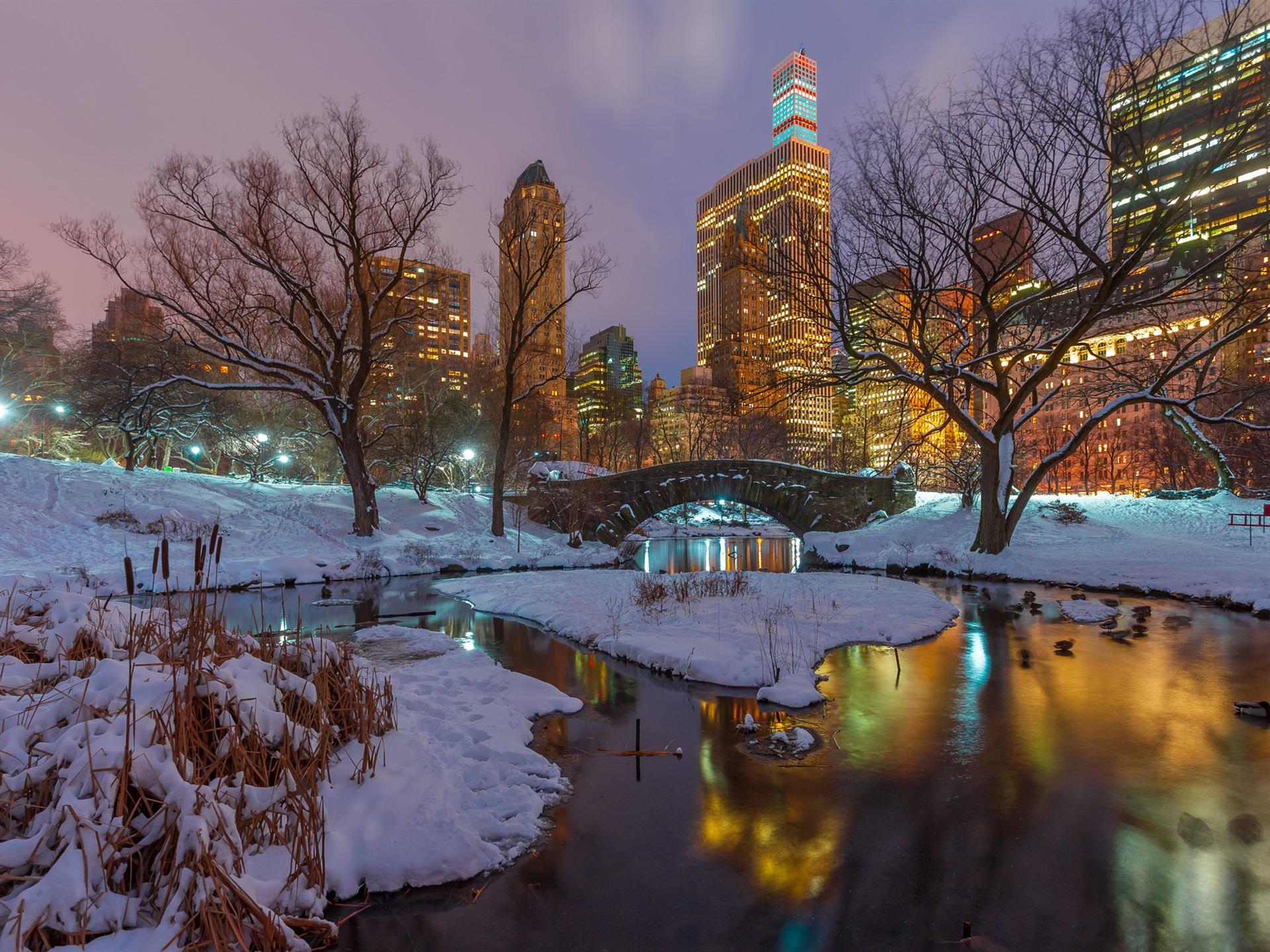 New York Central Park Schnee Baume Fluss Wolkenkratzer