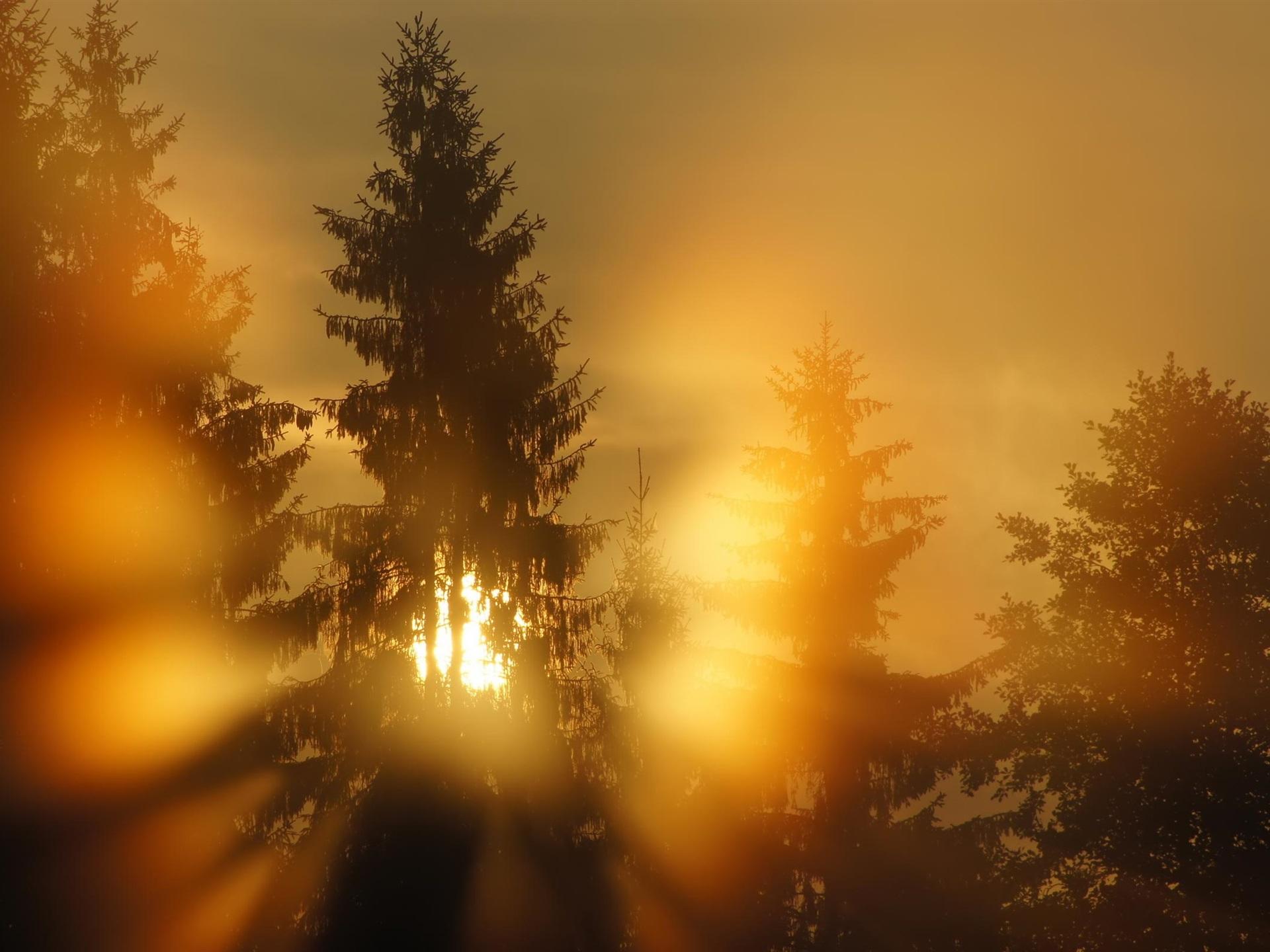 одна поздравление с первыми лучами солнца сможете избежать