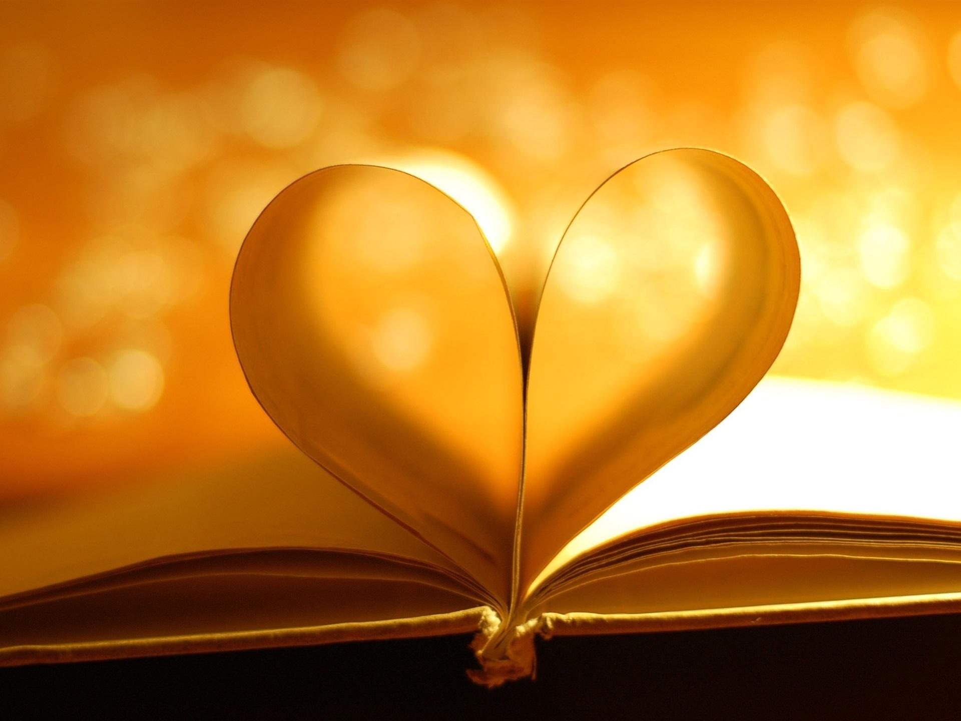 Любовь к книге в картинках