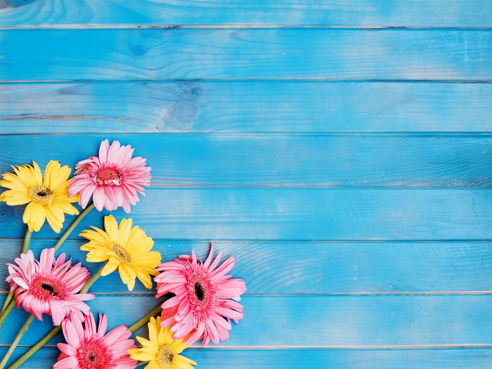 Fondos De Pantalla Rosa Rosa Flores Fondo De Madera: Fondos De Pantalla Flores Amarillas Y Rosadas Del Gerbera