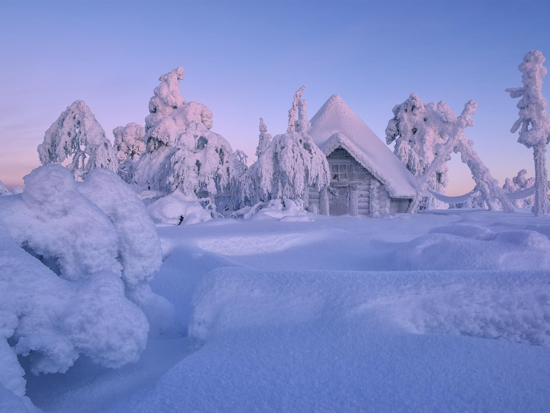 壁紙 フィンランド ラップランド 冬 厚い雪 木 家 2560x1600 Hd 無料のデスクトップの背景 画像