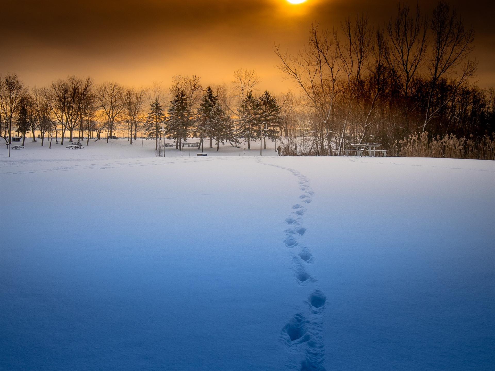 壁紙 冬 日没 雪 木 美しい風景 1920x1440 Hd 無料のデスクトップ