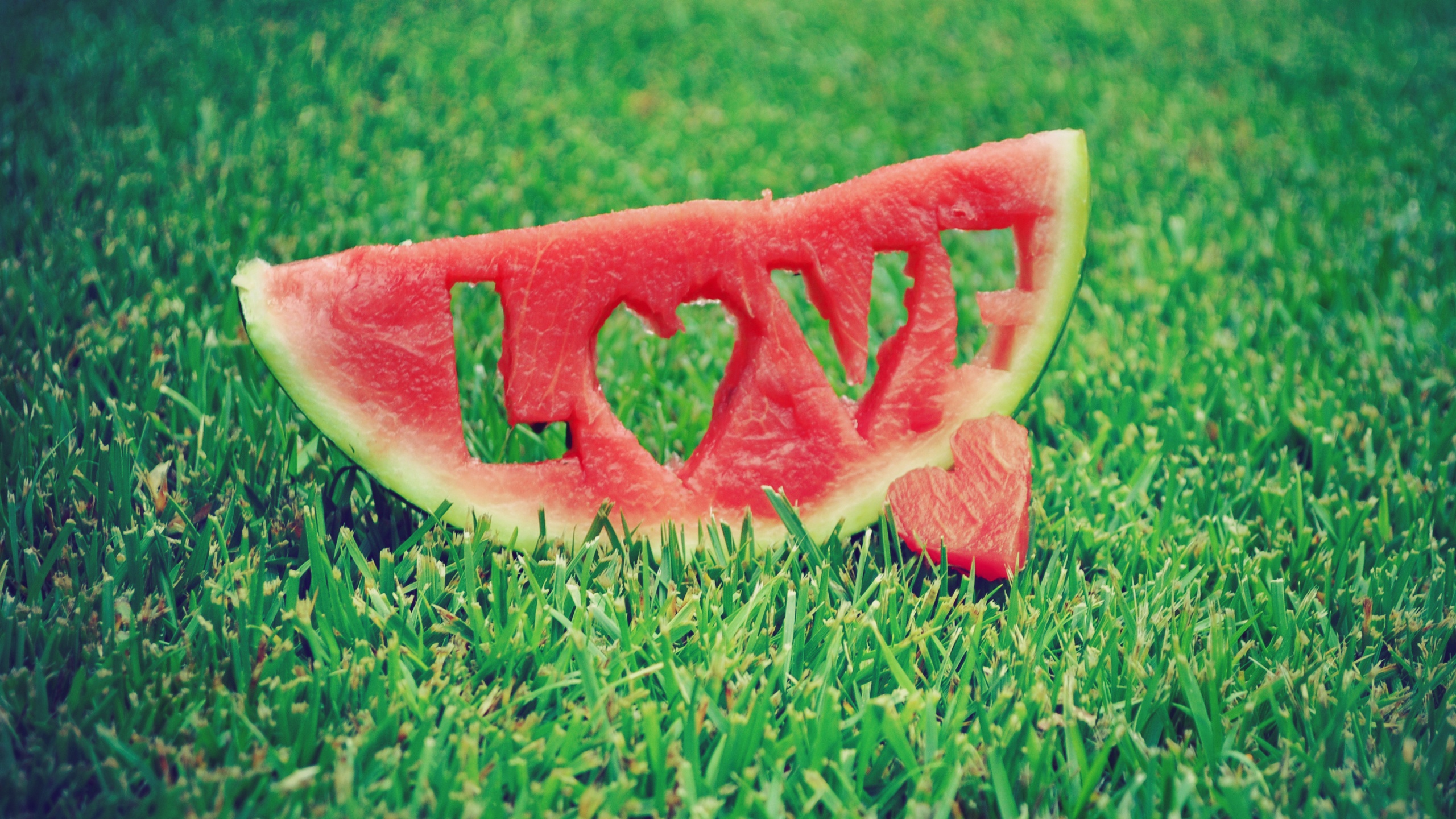 Watermelon Love Grass wallpaper - 2560x1440