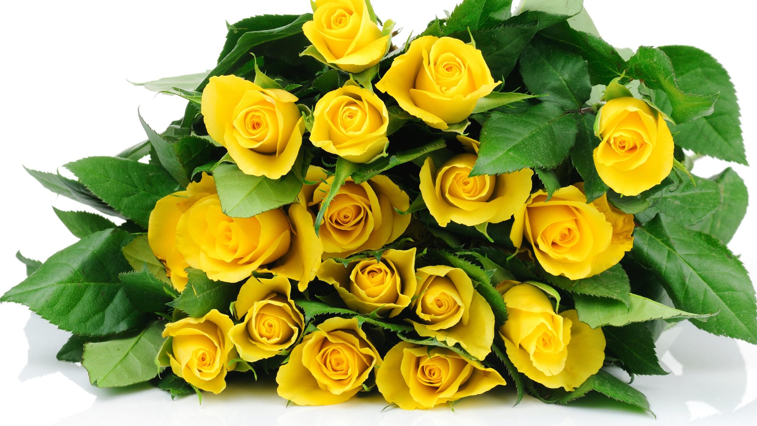 Fonds D Ecran A Bouquet Fleurs Roses Jaunes 2560x1440 Qhd Image