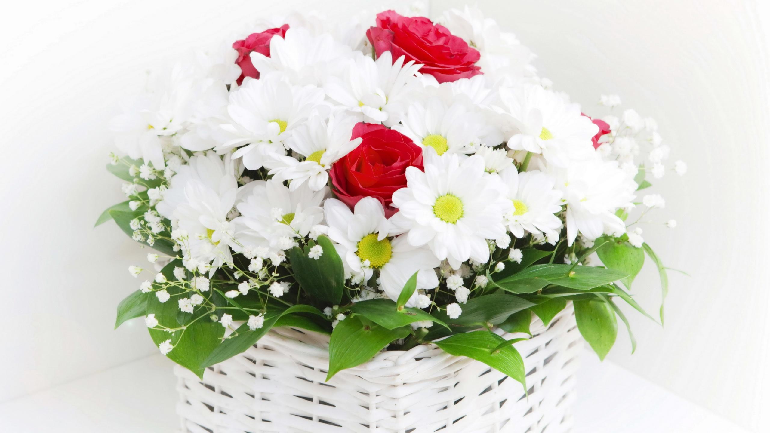http://fr.best-wallpaper.net/wallpaper/2560x1440/1302/Bouquets-Camomile-flowers_2560x1440.jpg