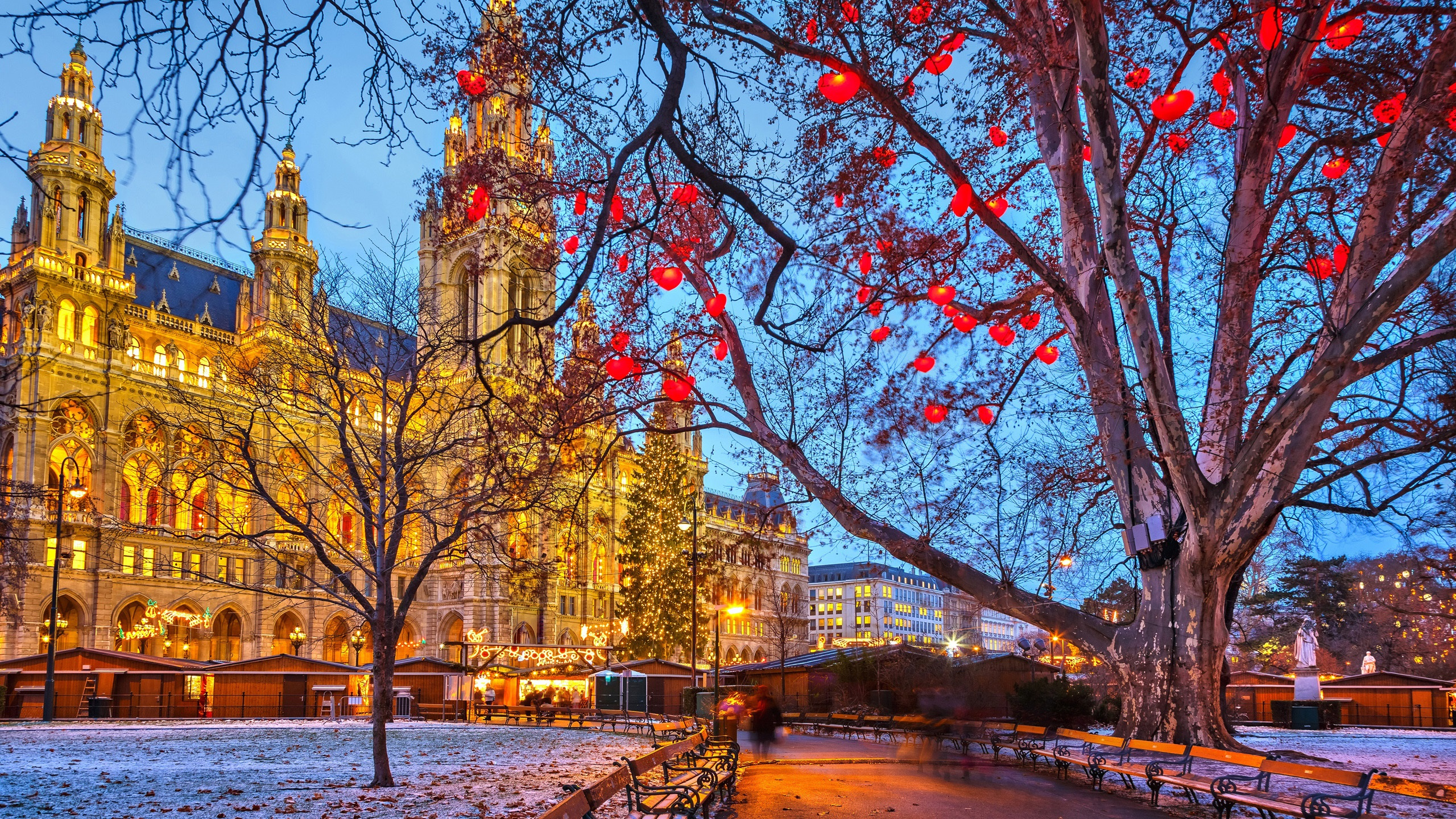 Central Park Christmas Lights