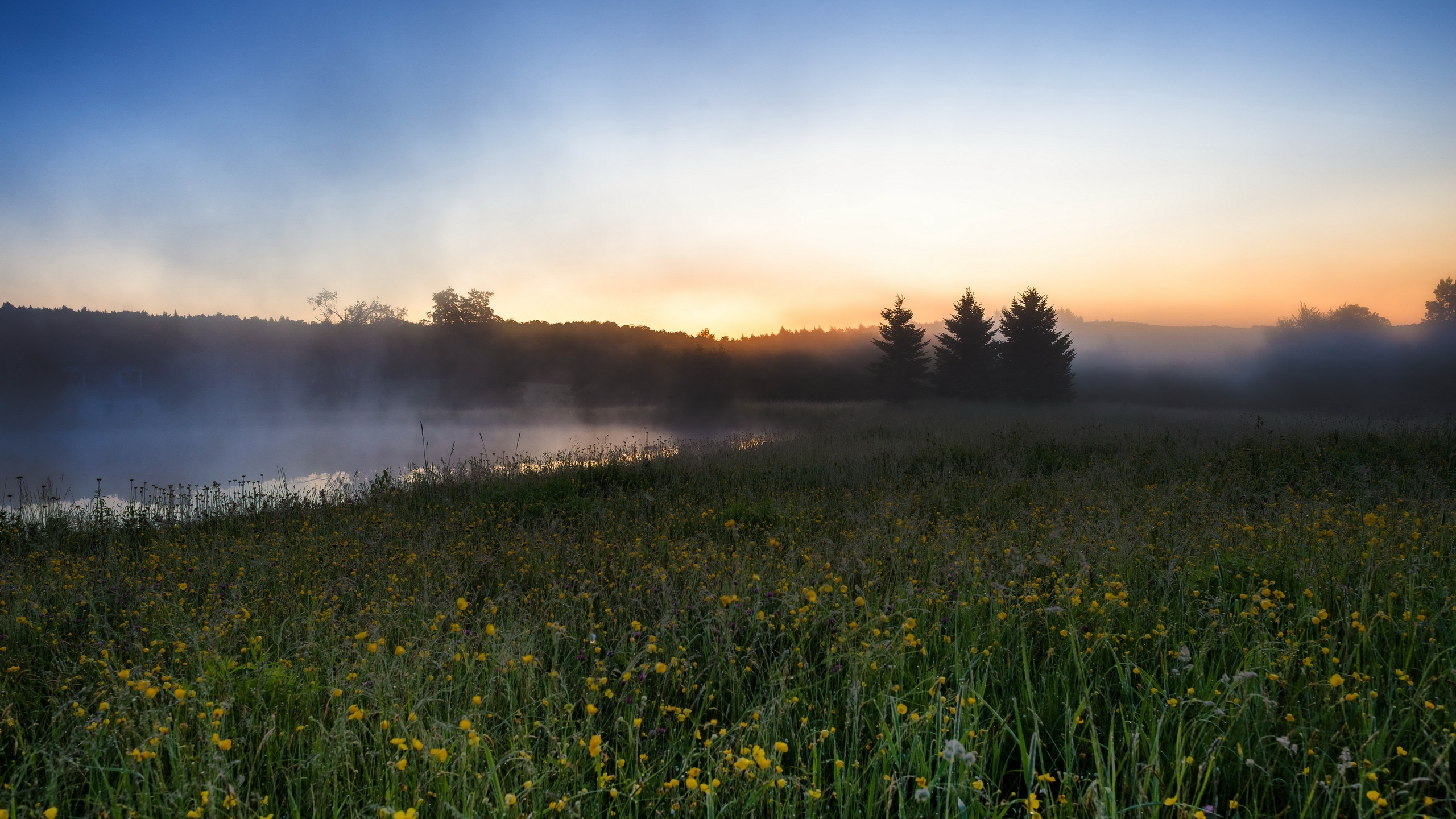 Fonds d 39 cran t l charger 2560x1440 matin paysages champs for Fond ecran qhd