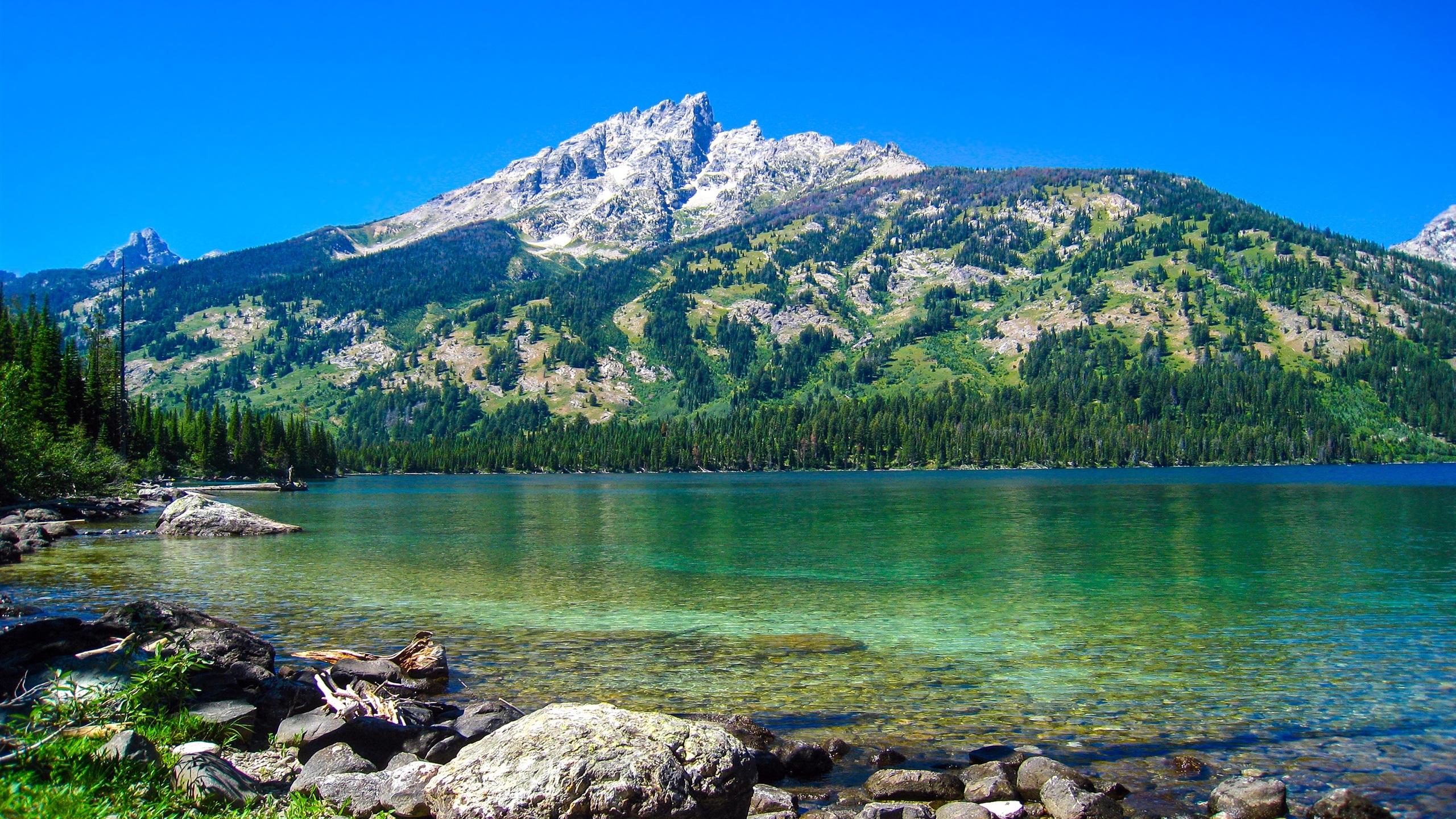 Download Wallpaper 2560x1440 Emerald Lake, Grand Teton National Park, Wyoming, USA, mountains ...