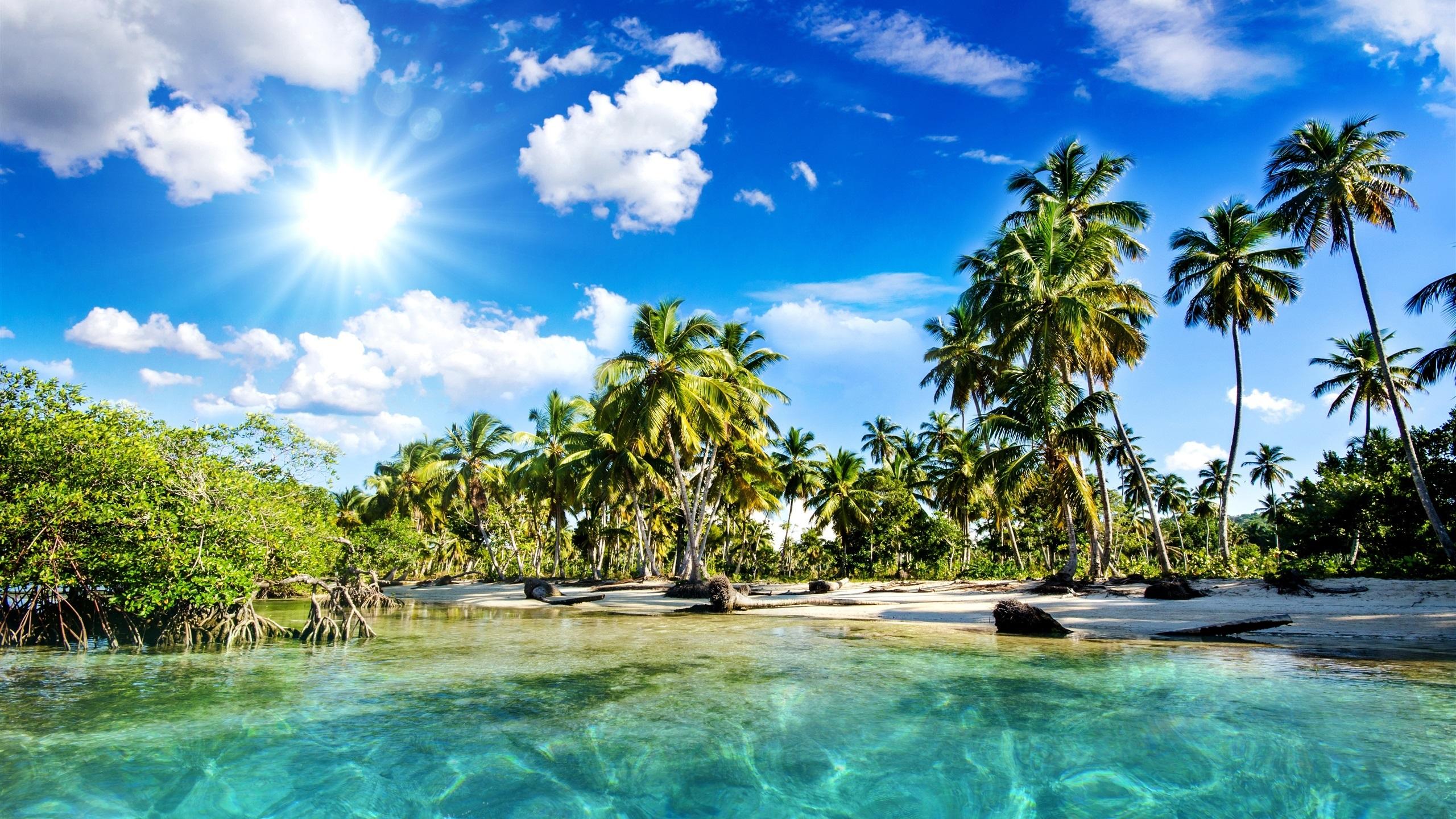 Beau paysage tropiques plage palmiers mer soleil for Fond ecran qhd