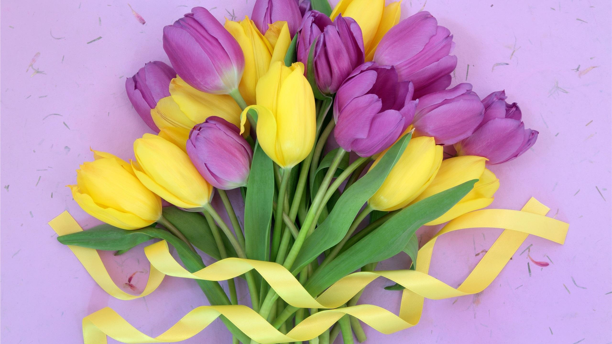 картинки на рабочий стол букеты тюльпанов тут главное разобрать