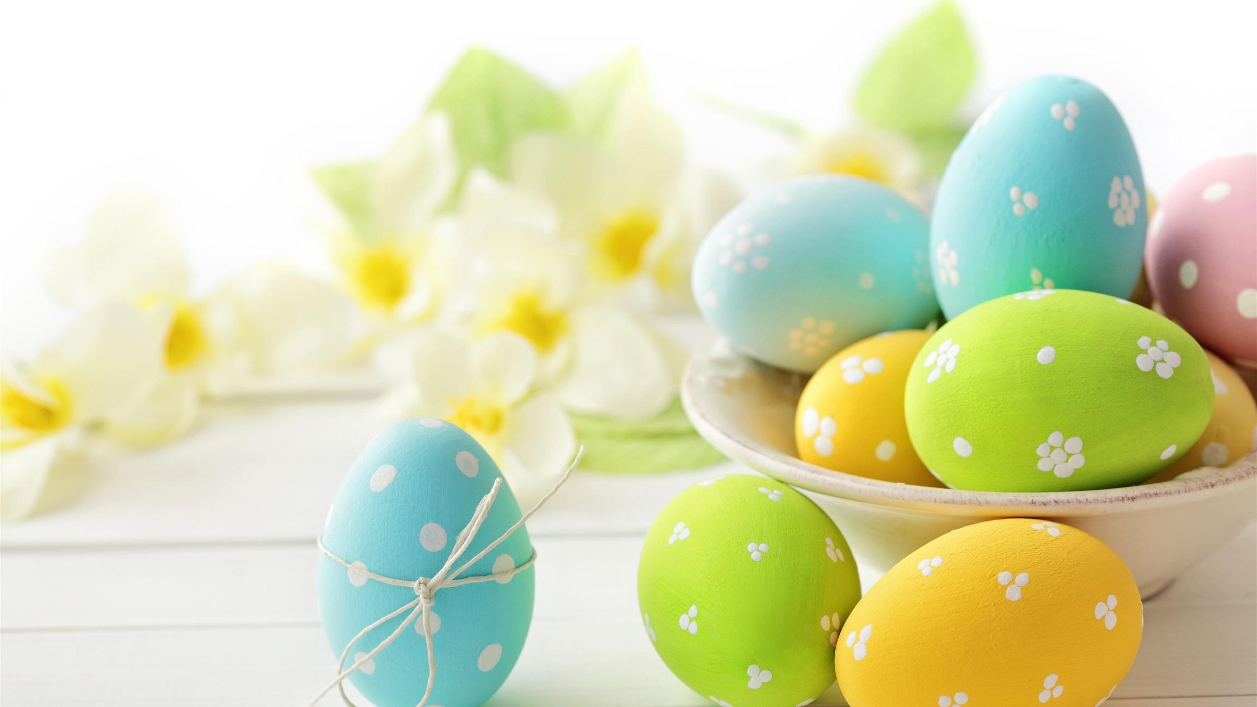 Fondos De Pantalla 1440x900 Tulipas Pascua Fondo De Color: Fondos De Pantalla Los Huevos, Pascua, Flores, Primavera